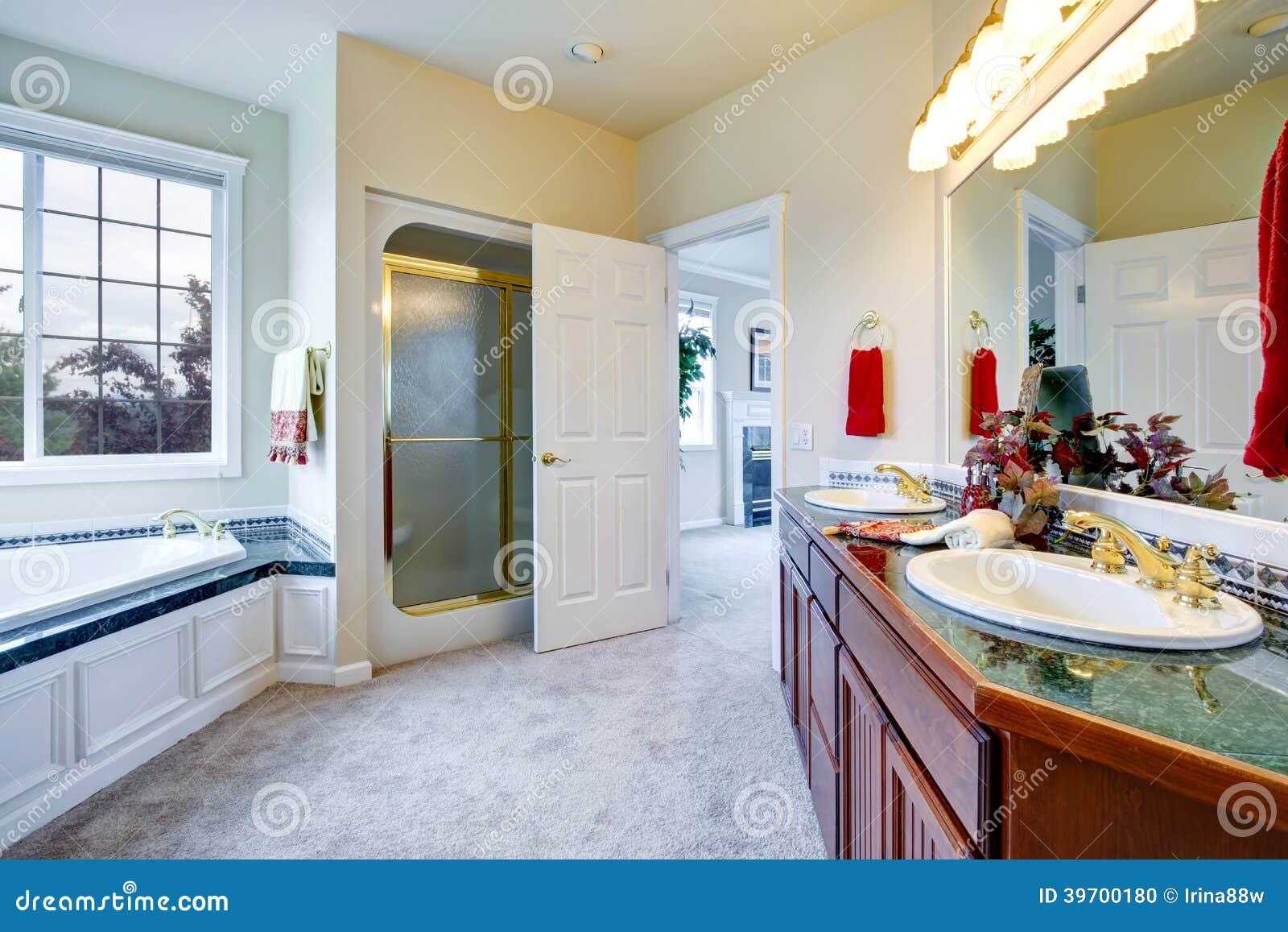 Brunt ledar  sovrum för lyx stock illustrationer   bild: 77590932