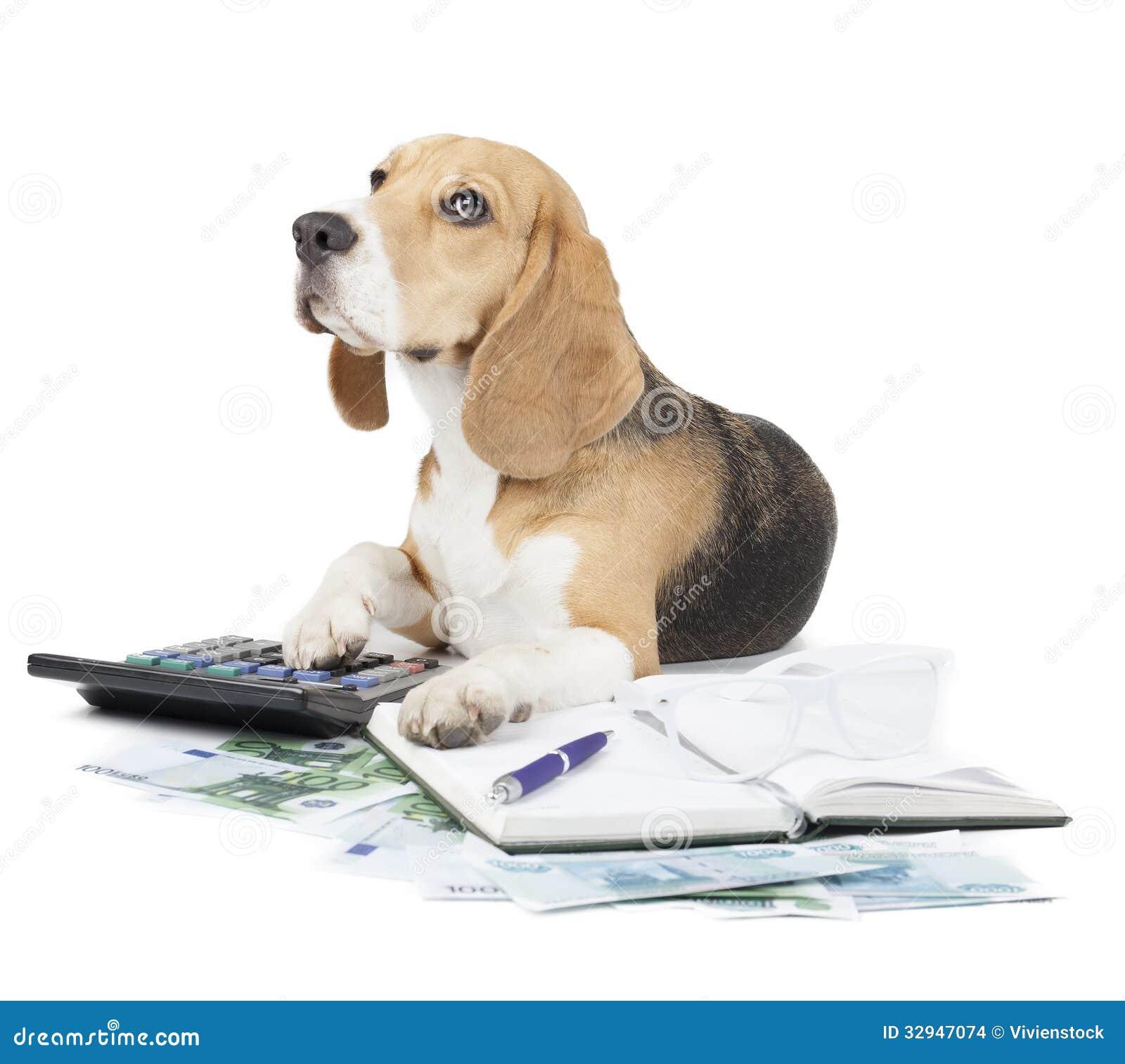 Máquina de escrever do cão do negócio
