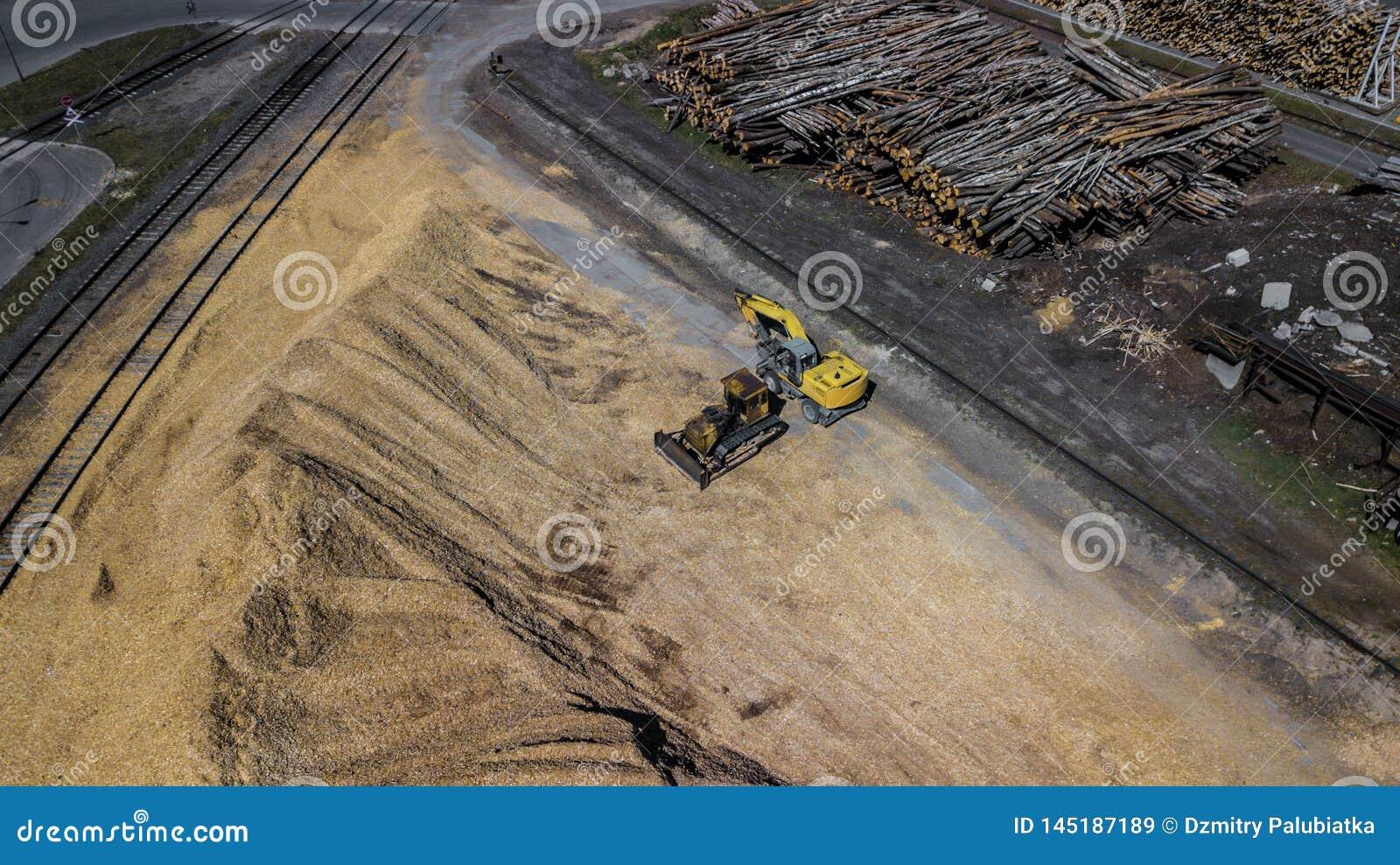 M?quina escavadora de uma pilha da serragem Ind?stria do Woodworking