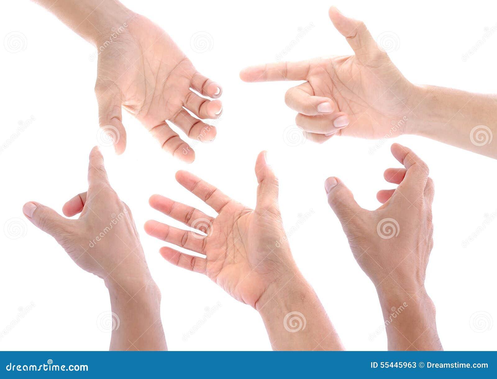 Mão ajustada no fundo branco, isolado