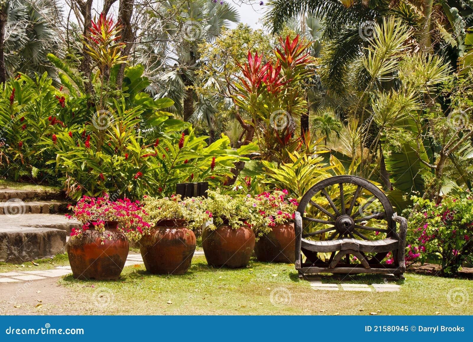 fotos de jardim tropical:Green Lush Tropical Gardens