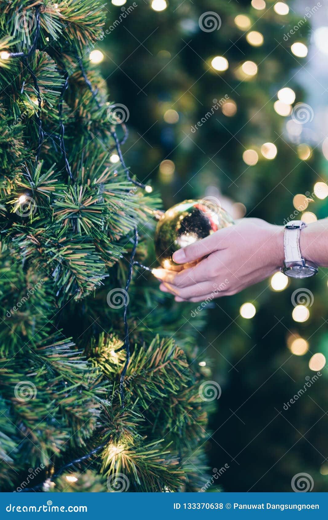 Mão da mulher que guarda ramos da decoração, da caixa de presente e de pinheiro do Natal