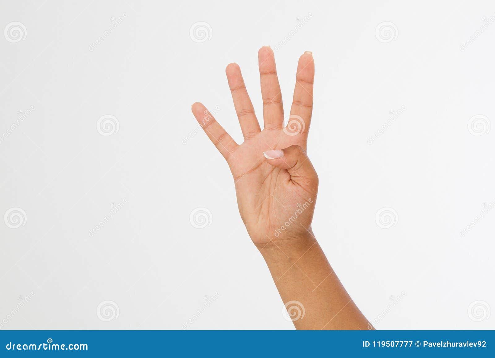 A mão do ` s da mulher negra mostra quatro dedos Gesto mão afro-americana Zombaria acima Copie o espaço molde blank