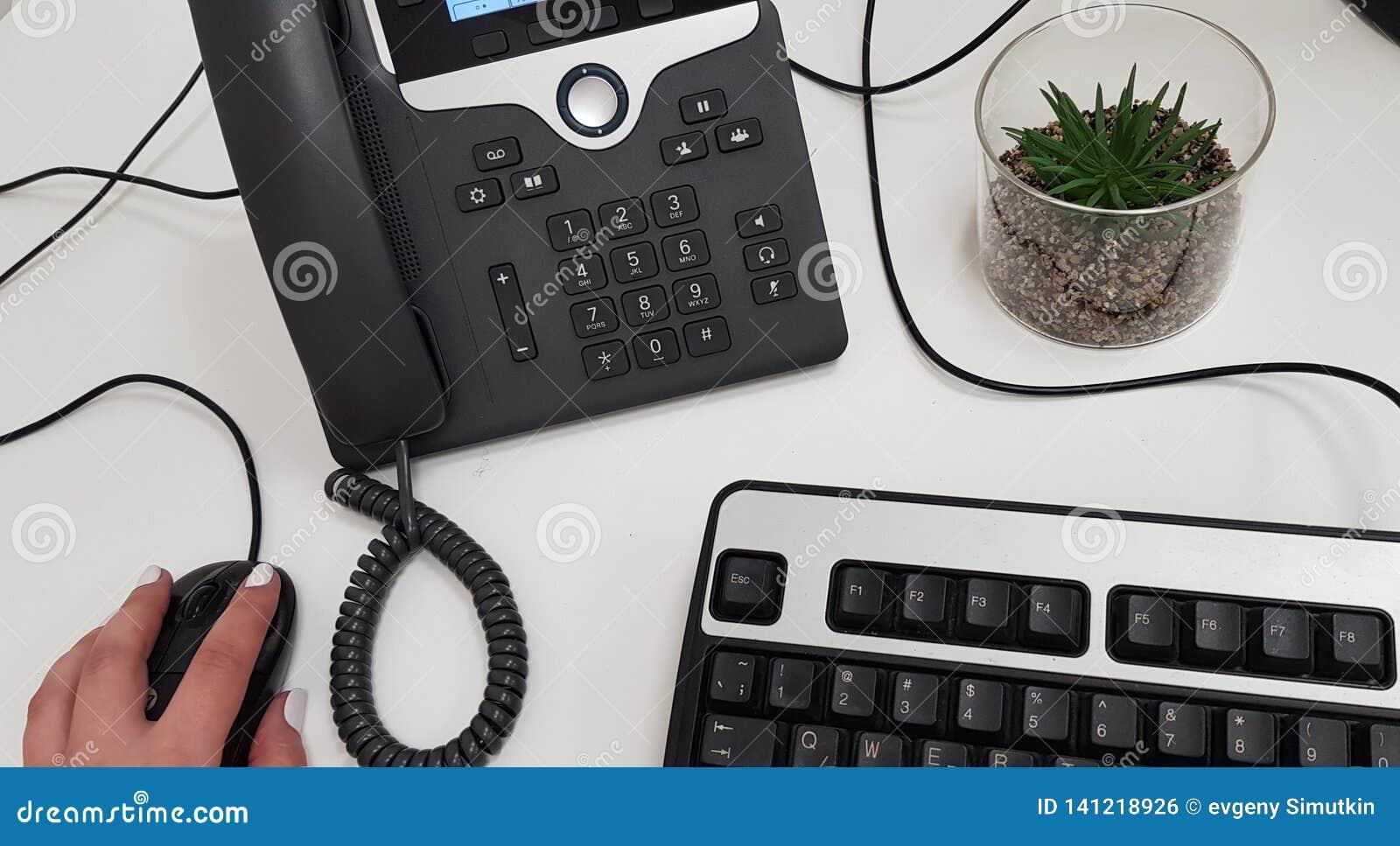 Mão fêmea no rato preto do computador perto do telefone do escritório