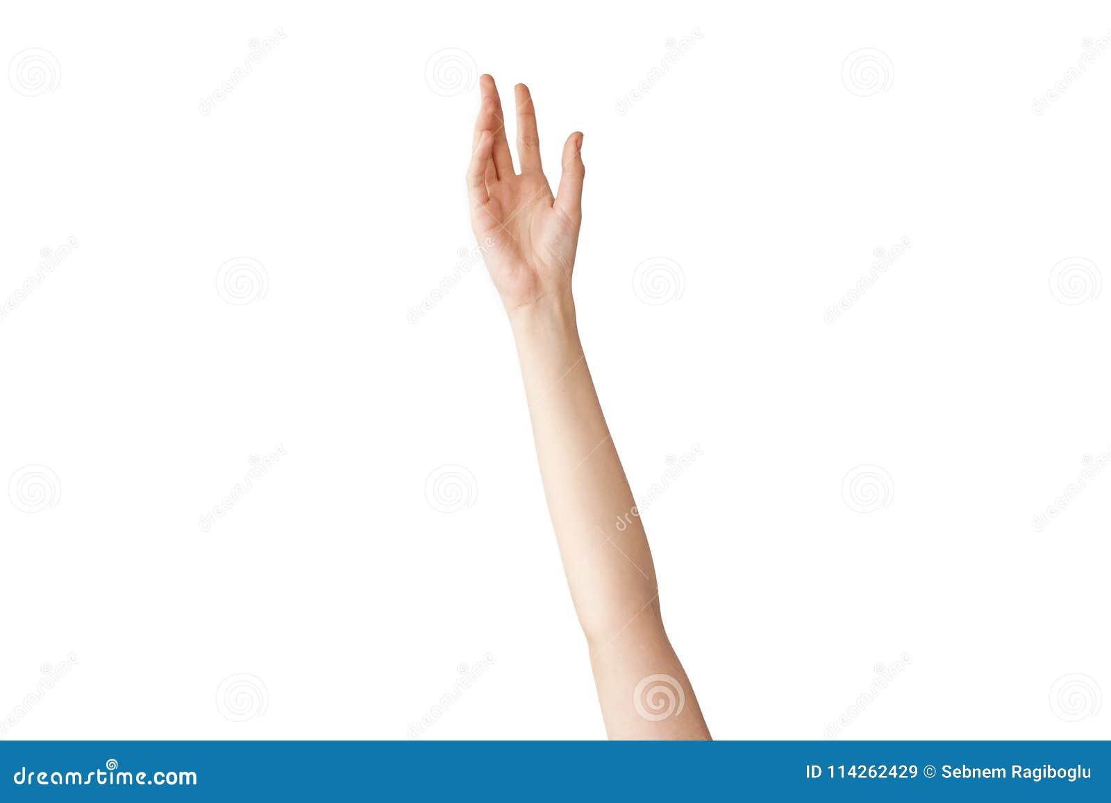 Mão fêmea que alcança para fora no fundo isolado