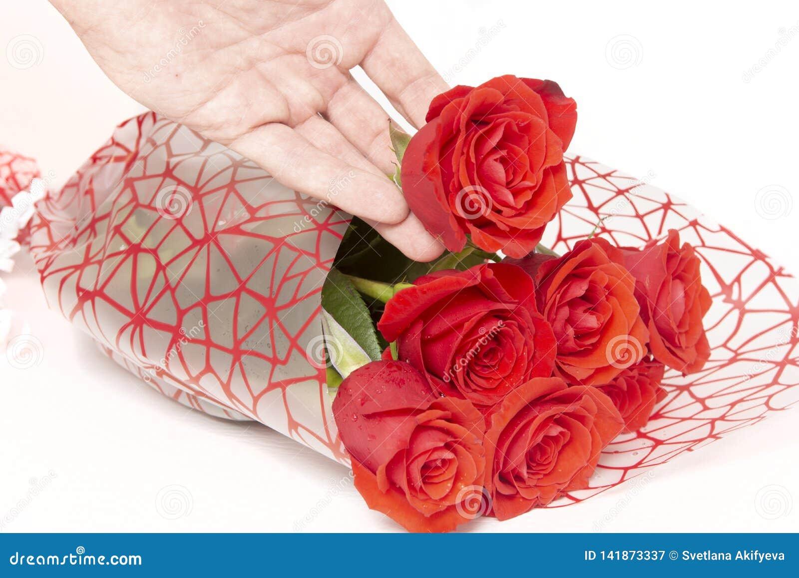 Mão que guarda um ramalhete das rosas em um fundo branco
