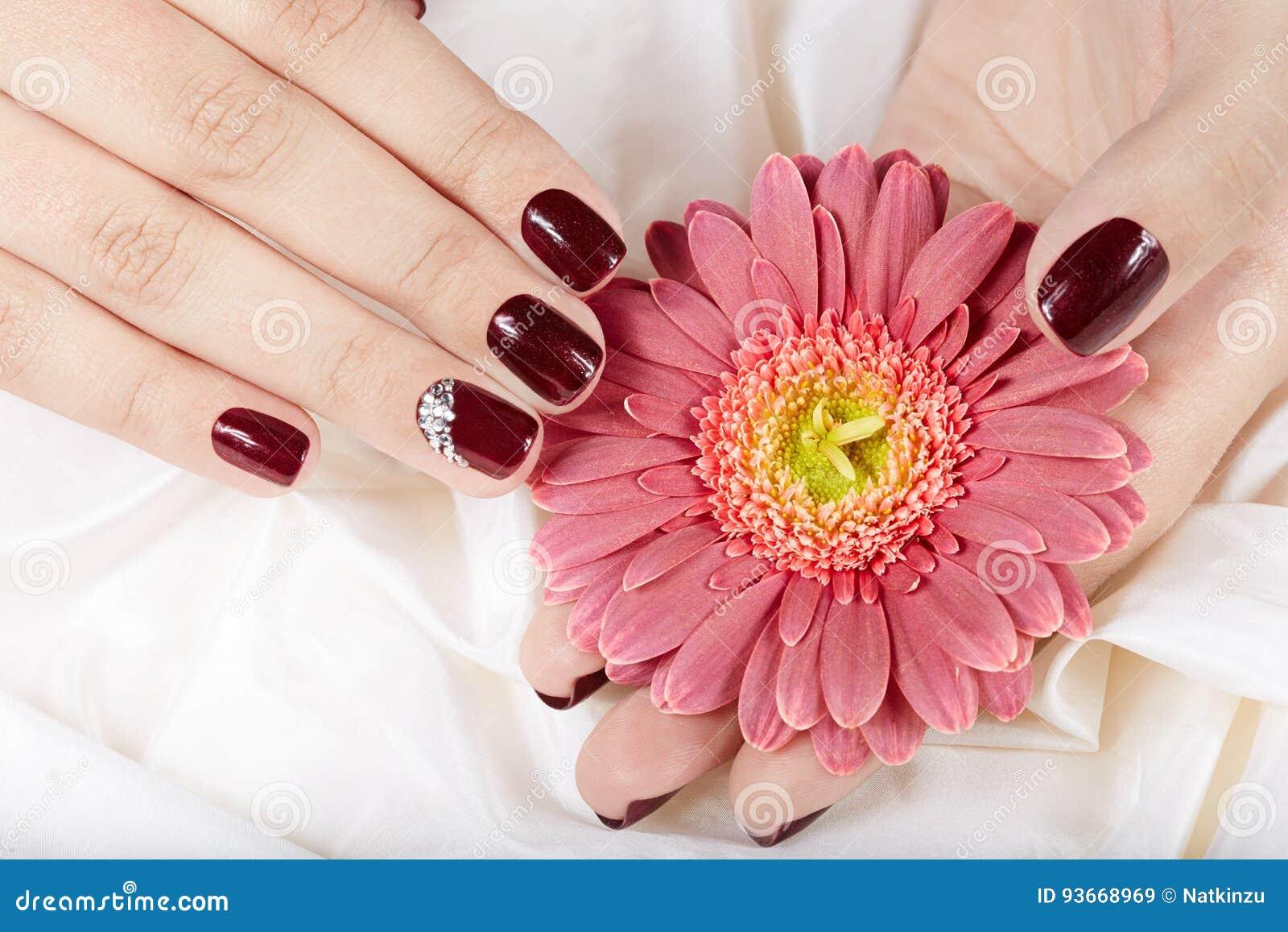 Mãos com os pregos manicured curtos coloridos com verniz para as unhas roxo escuro