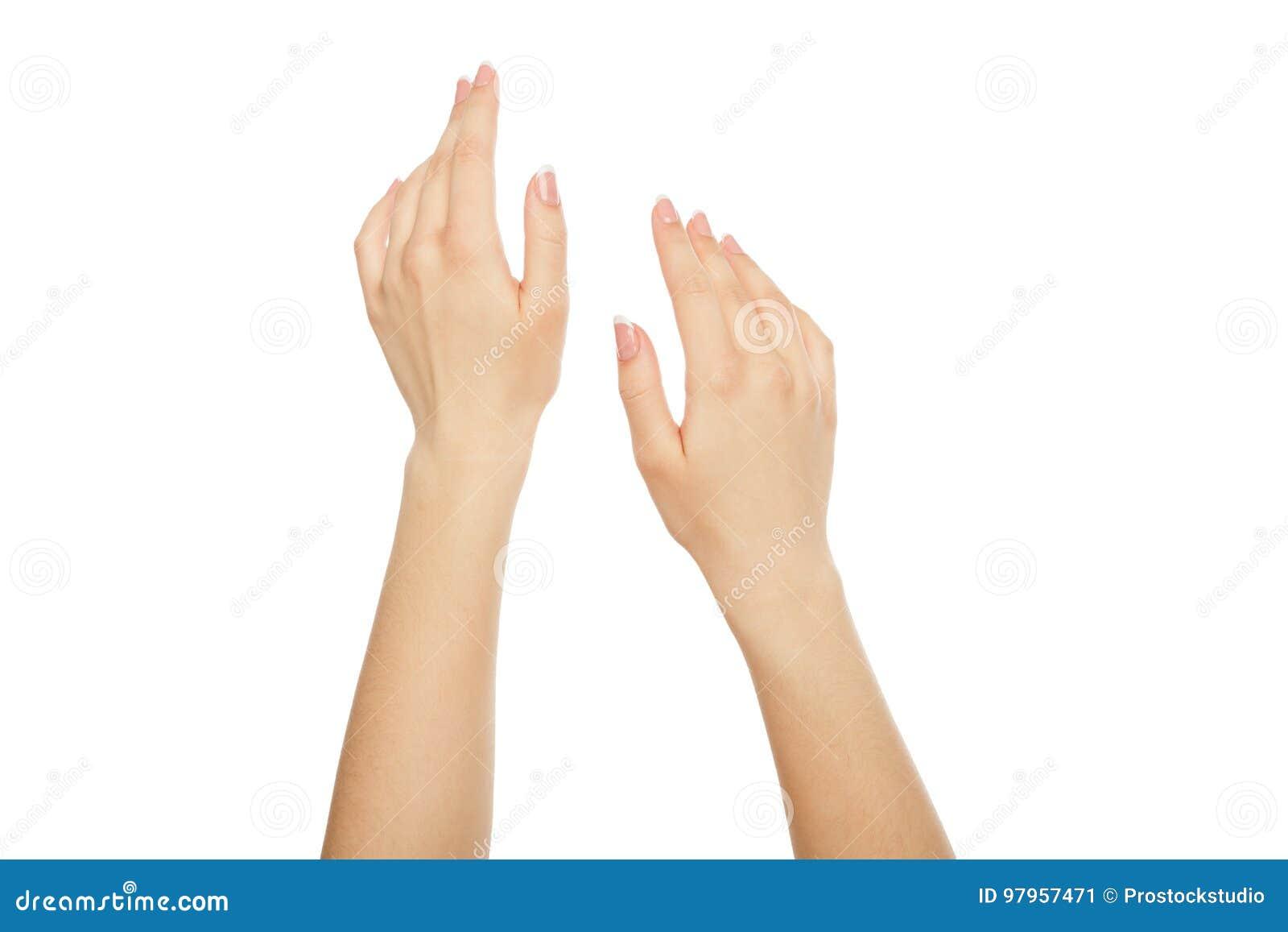 Mãos do ` s da mulher com tratamento de mãos francês, colheita, entalhe