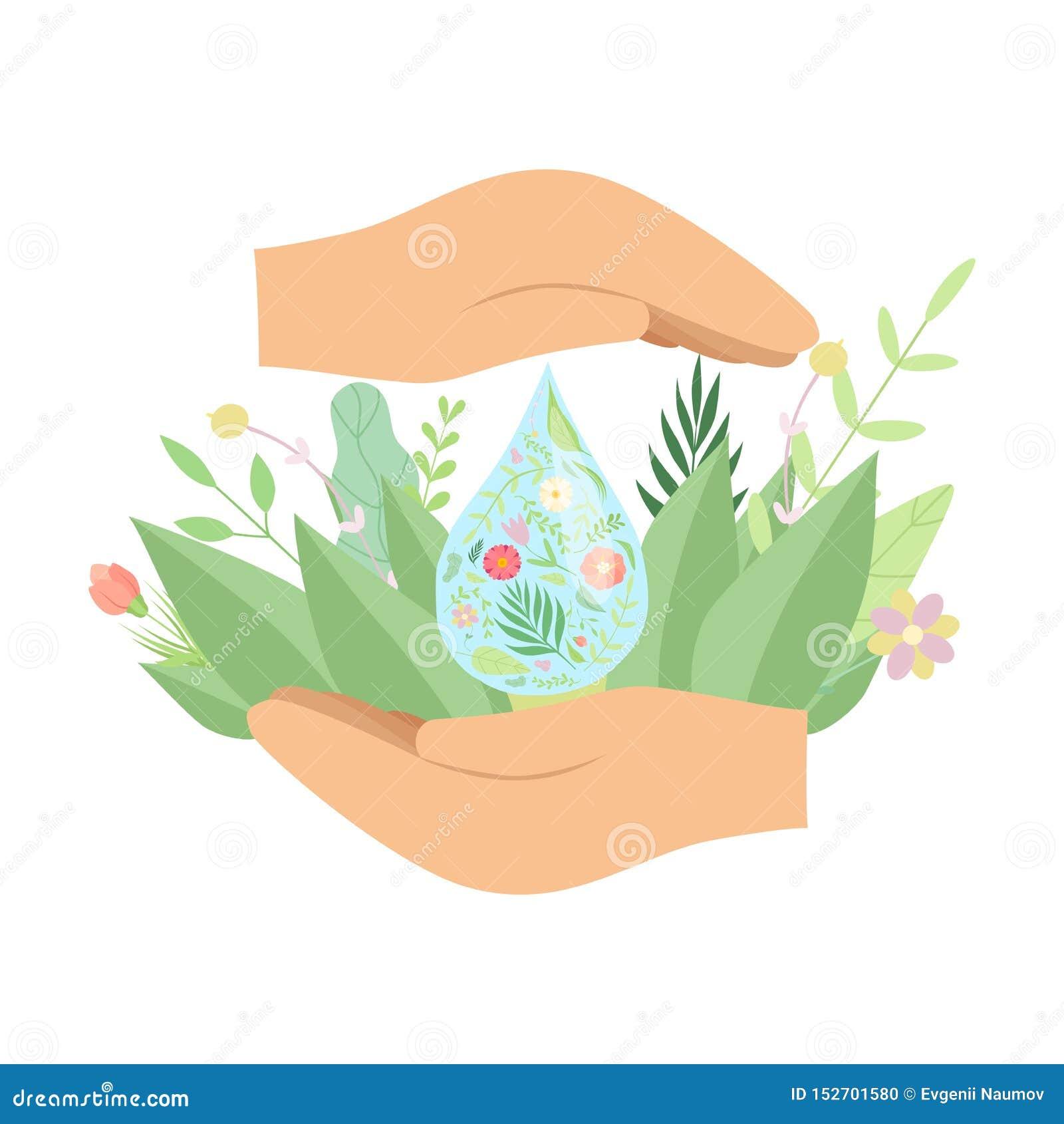 Mãos humanas que guardam a gota da água fresca, as folhas verdes e as flores, água de salvaguarda, proteção ambiental, conceito d