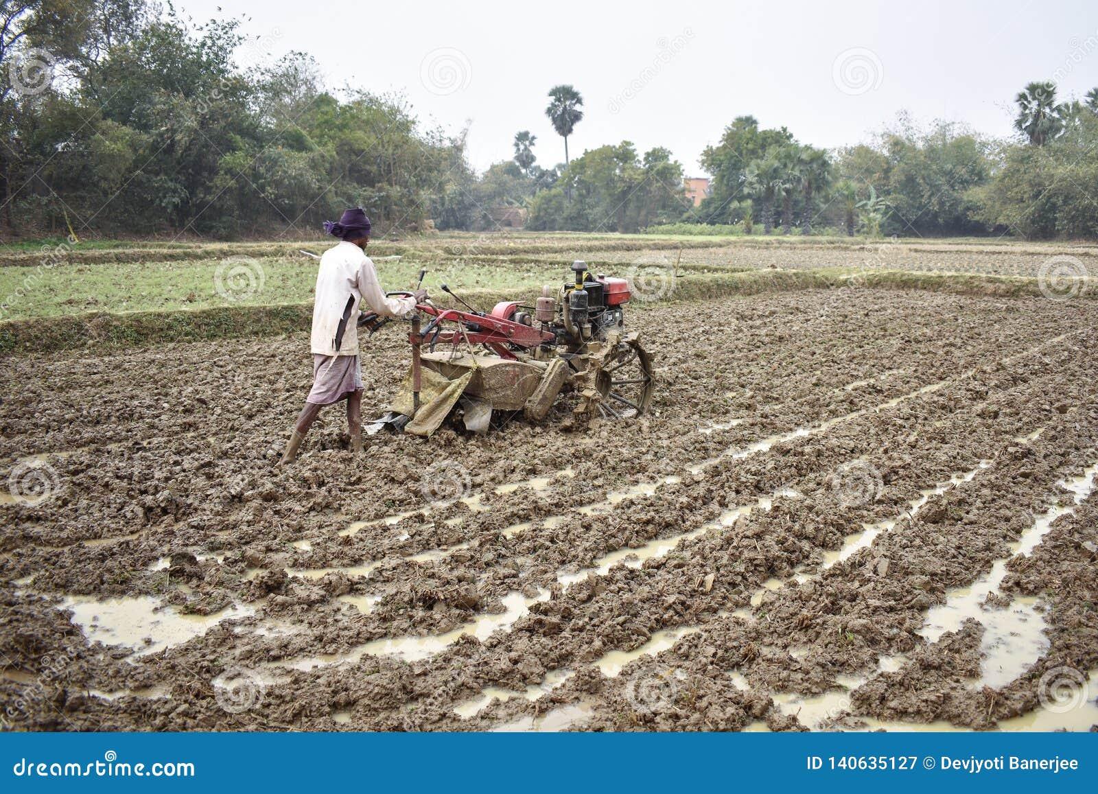 Mężczyzna uprawowa ziemia ręką, irlandczyka pole ciągnik, ręcznie