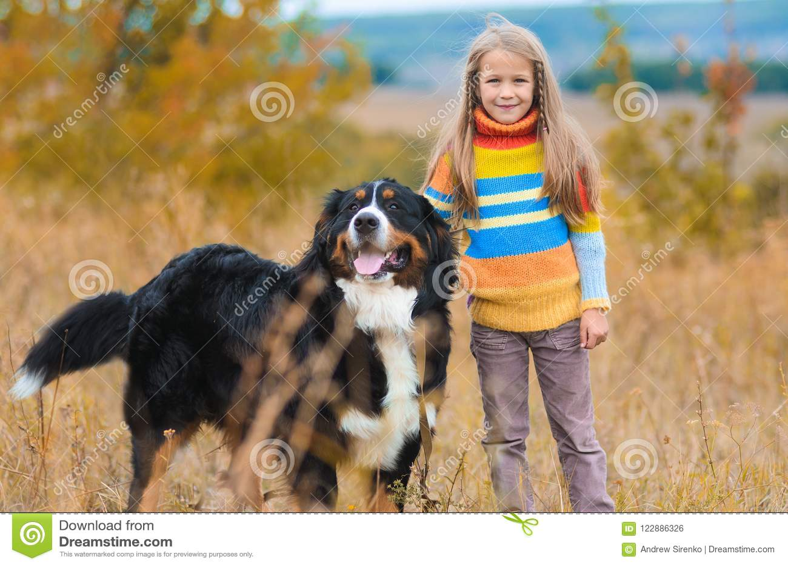 Mädchen auf Weg mit ihrem Vierbeiner auf Herbst fängt Berner auf