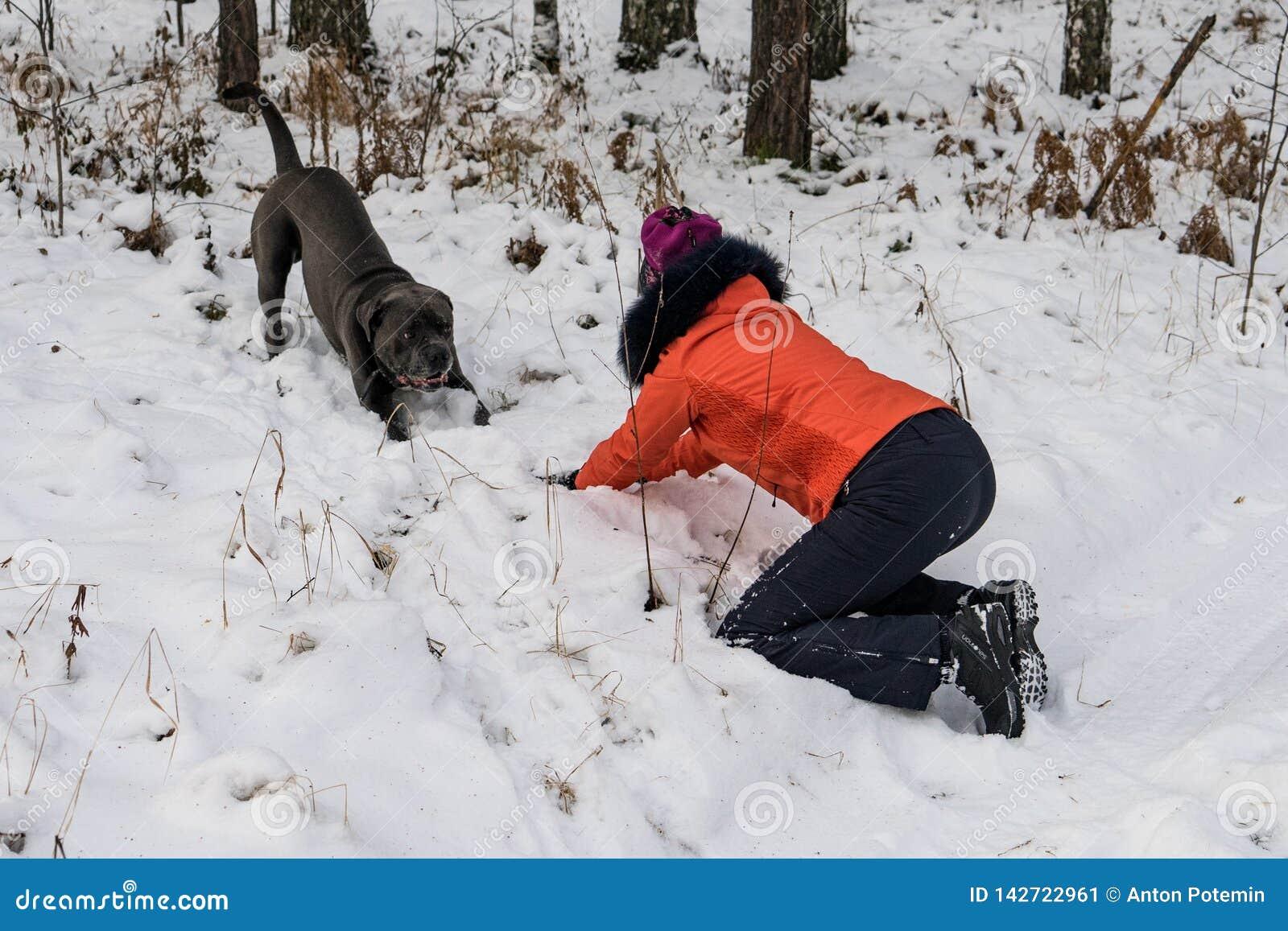 Mädchen, das mit einem Hund im Wald spielt