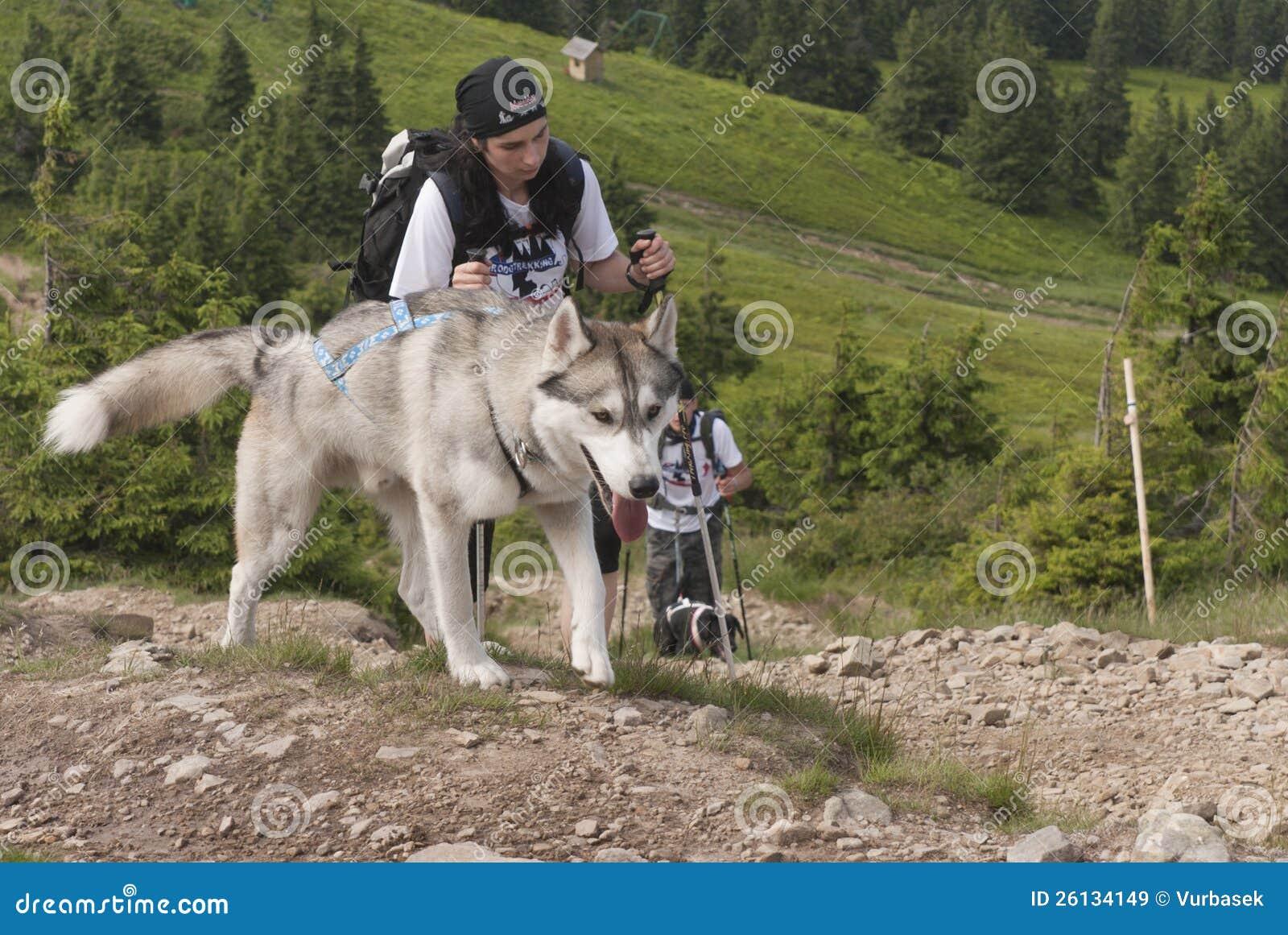 Mädchen und sibirischer Schlittenhund