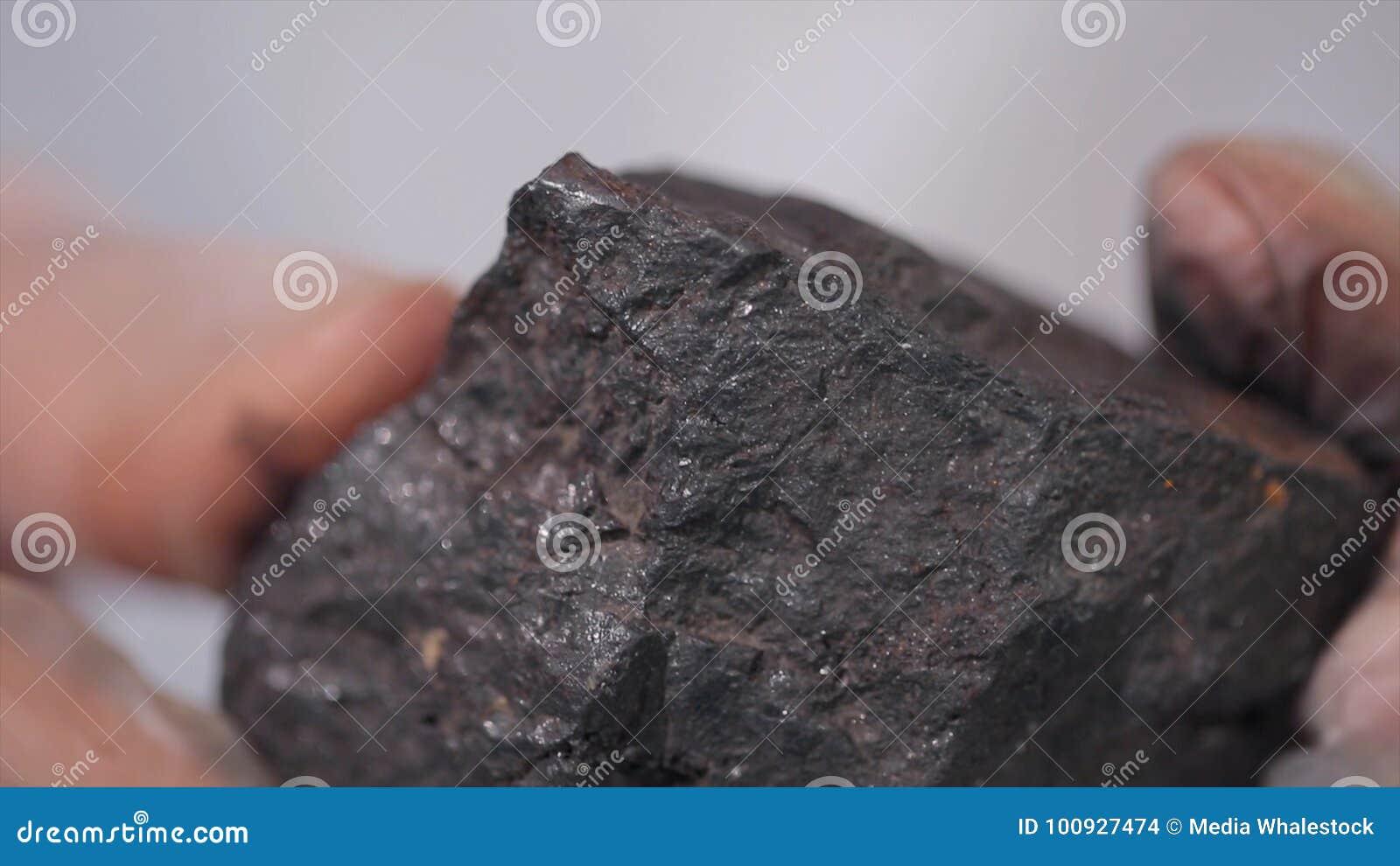 Männliche Hände in den Handschuhen, die Kohle halten Wissenschaftler mit einer Probe der Kohle Schwarze Kohle in Bergmann ` s Han