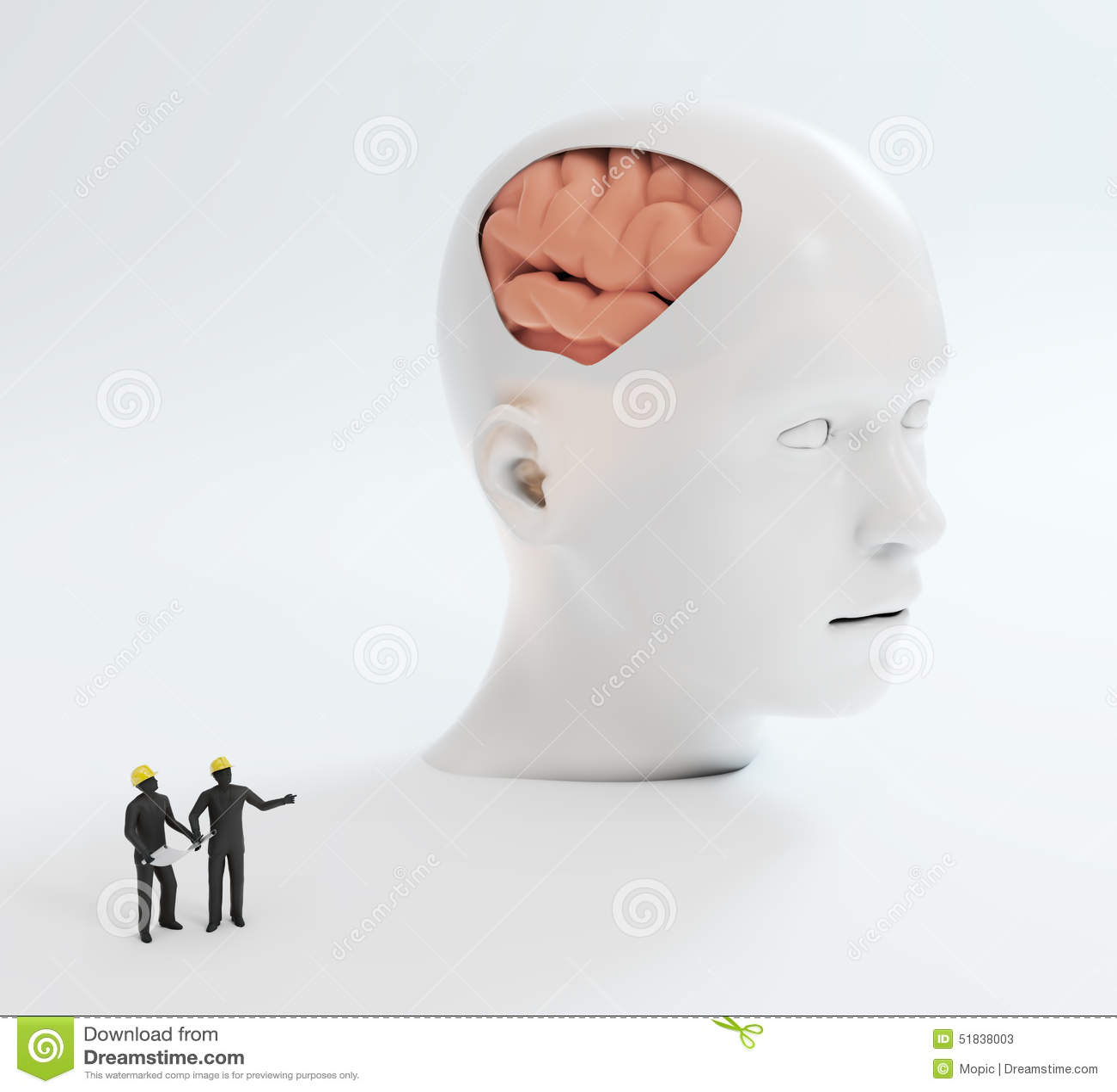 Mänsklig intelligens och psykologisk utveckling