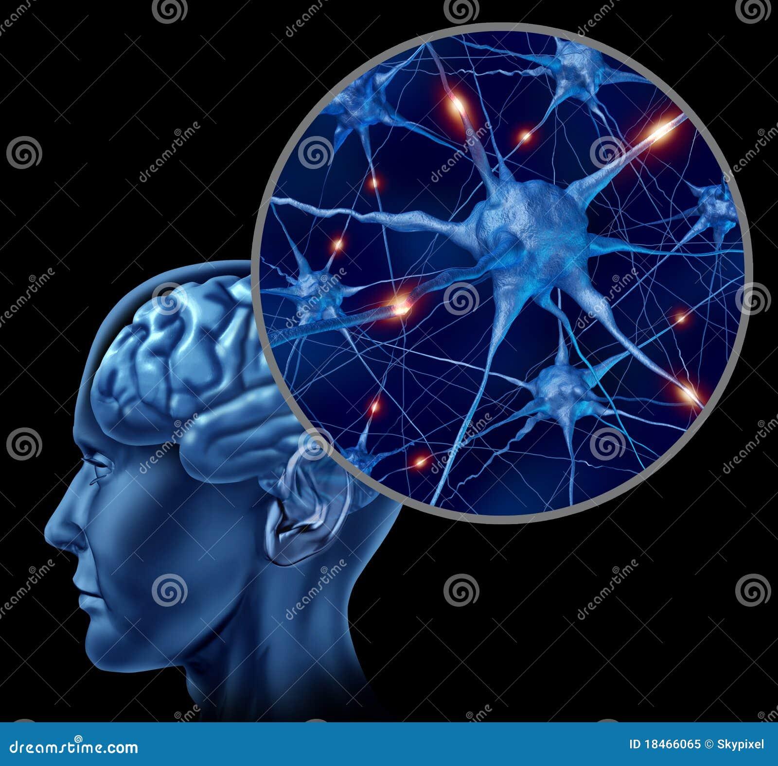 Mänskligt medicinskt symbol för hjärna