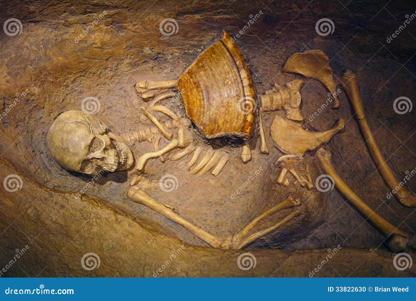 Mänskligt skelett- återstår