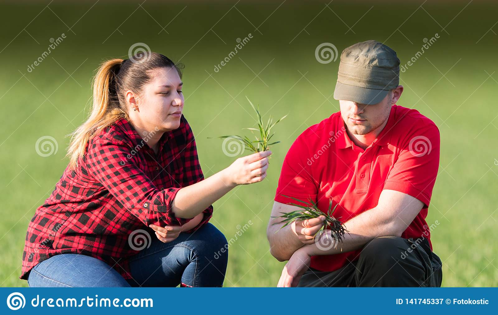 Młodzi rolnicy examing uprawianych pszenicznych pola