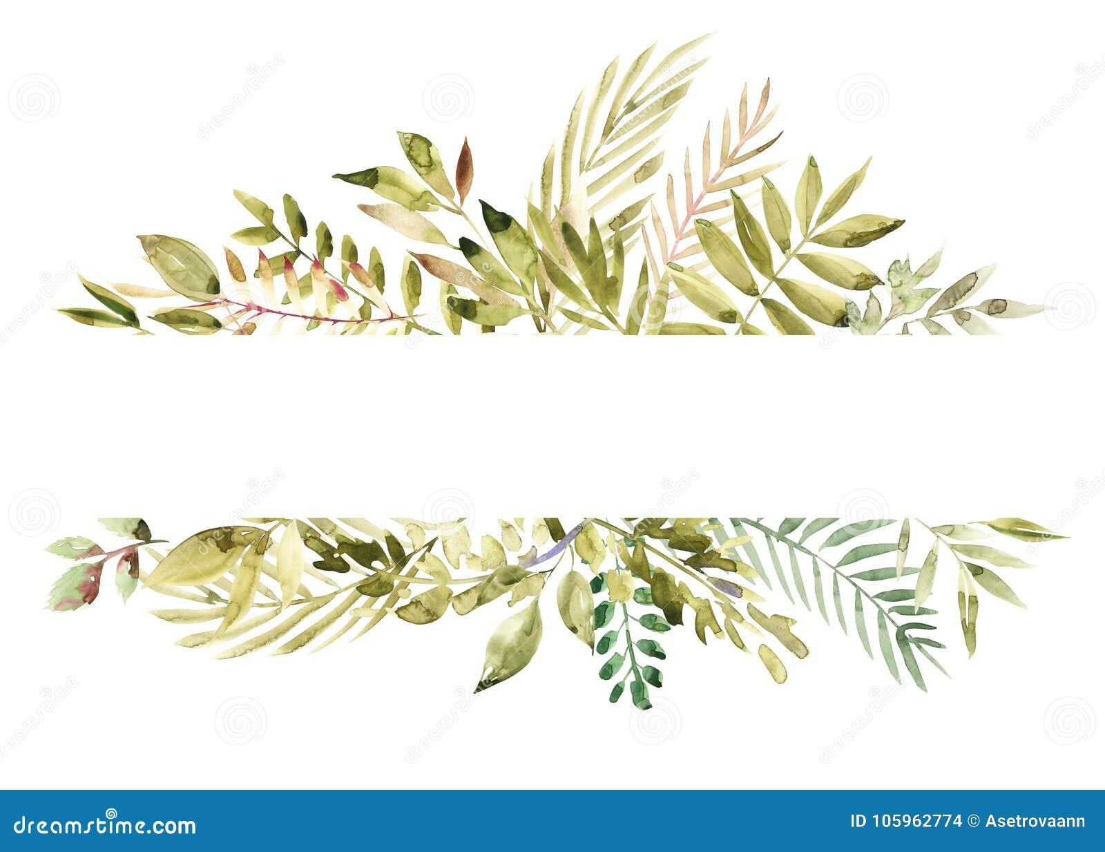 Målat grönt blom- baner för vattenfärg som hand isoleras på vit bakgrund Läka örter för kort som gifta sig inbjudan
