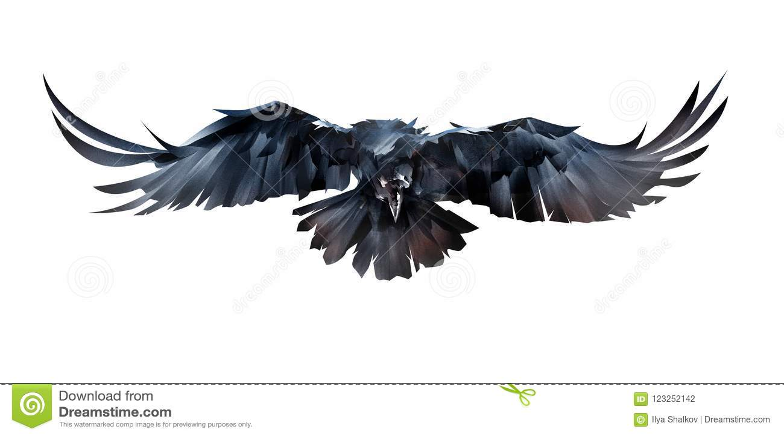 Målat på vitt korpsvart främst för bakgrundsflygfågel
