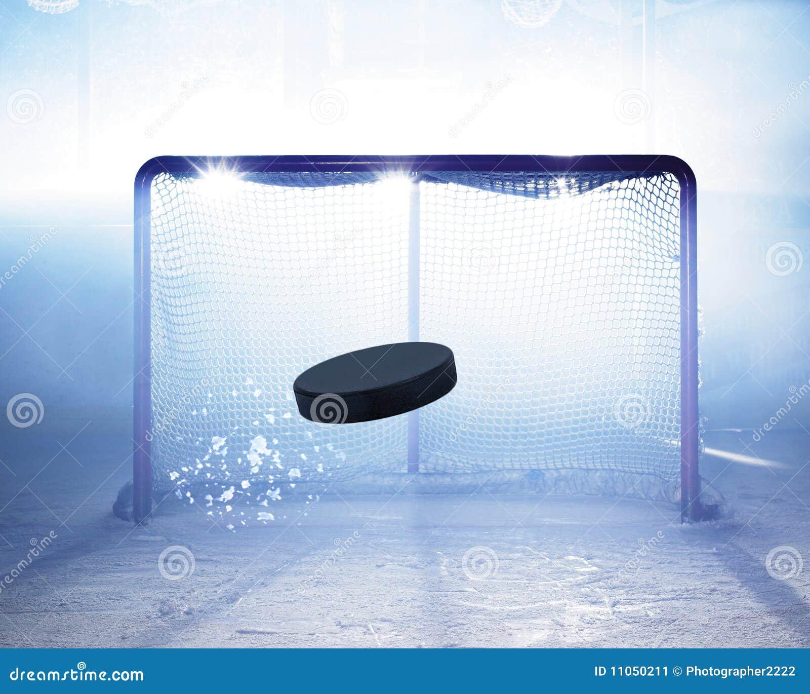 Målhockeyis