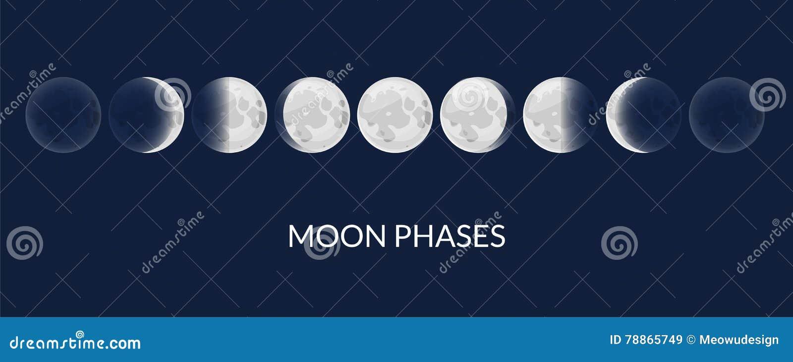 Månefaser, vektorillustration