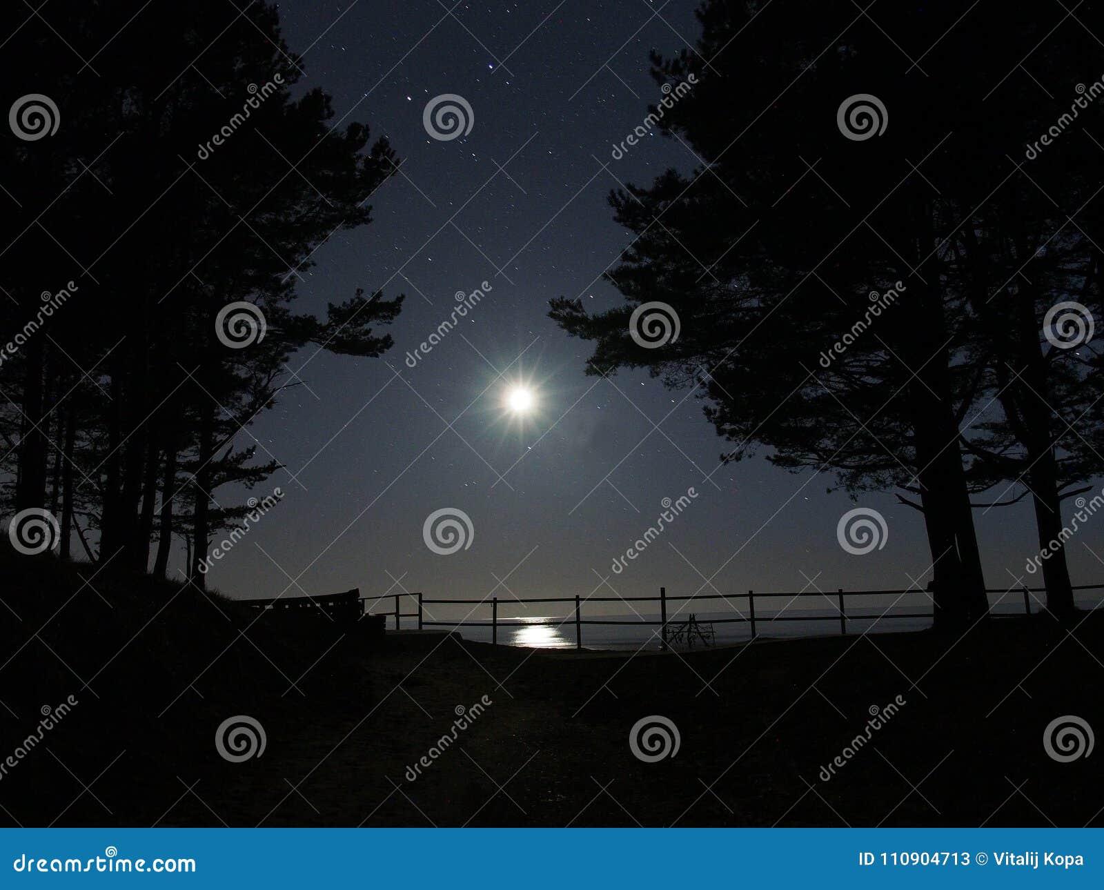 Måneljus och stjärnagaminikonstellation över det baltiska havet