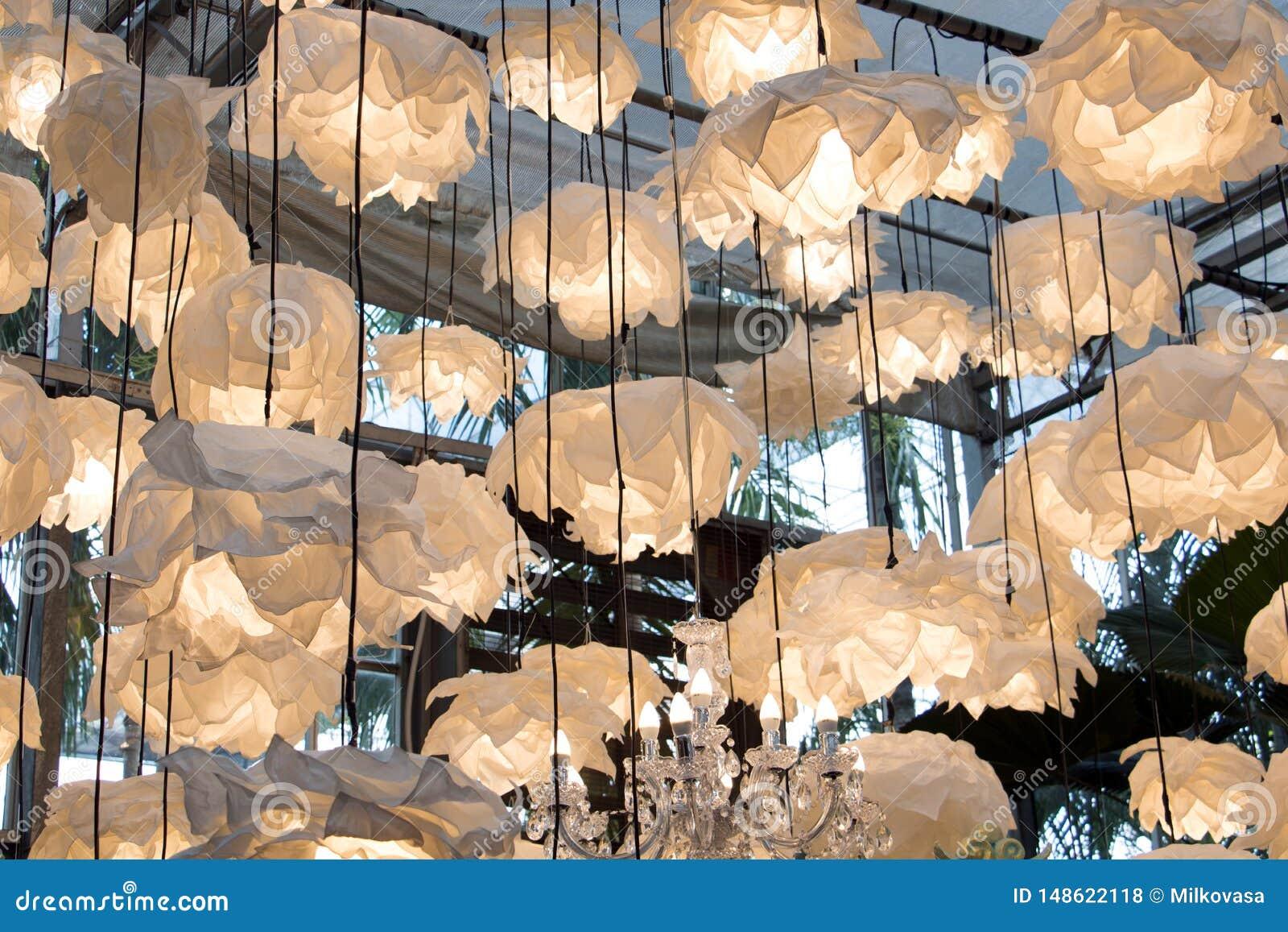 Många lampor hänger från taket i växthuset