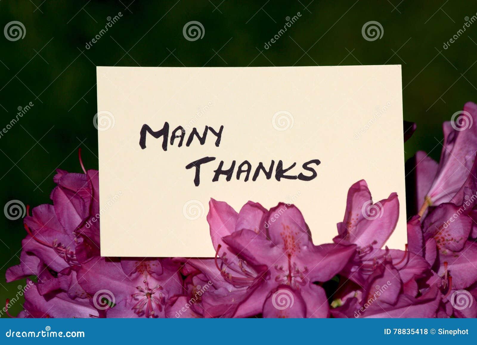 Många thanks