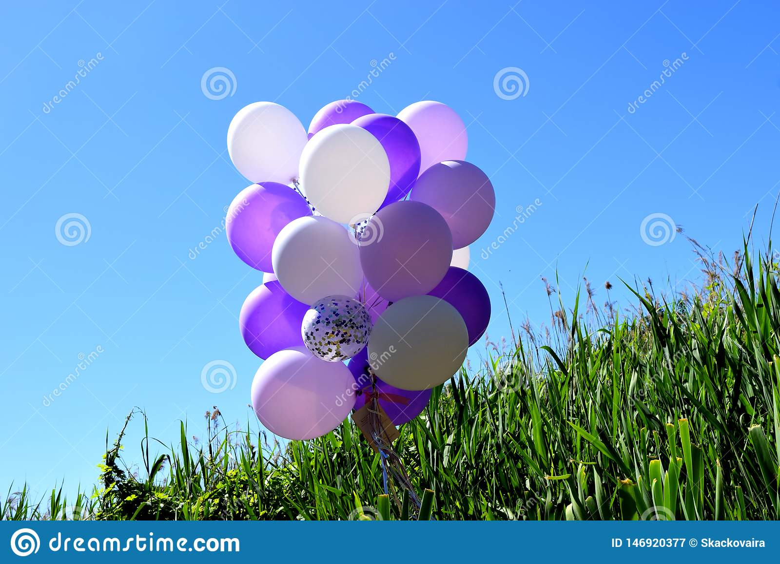 Mångfärgade festliga ballonger på grönt gräs mot en blå himmel
