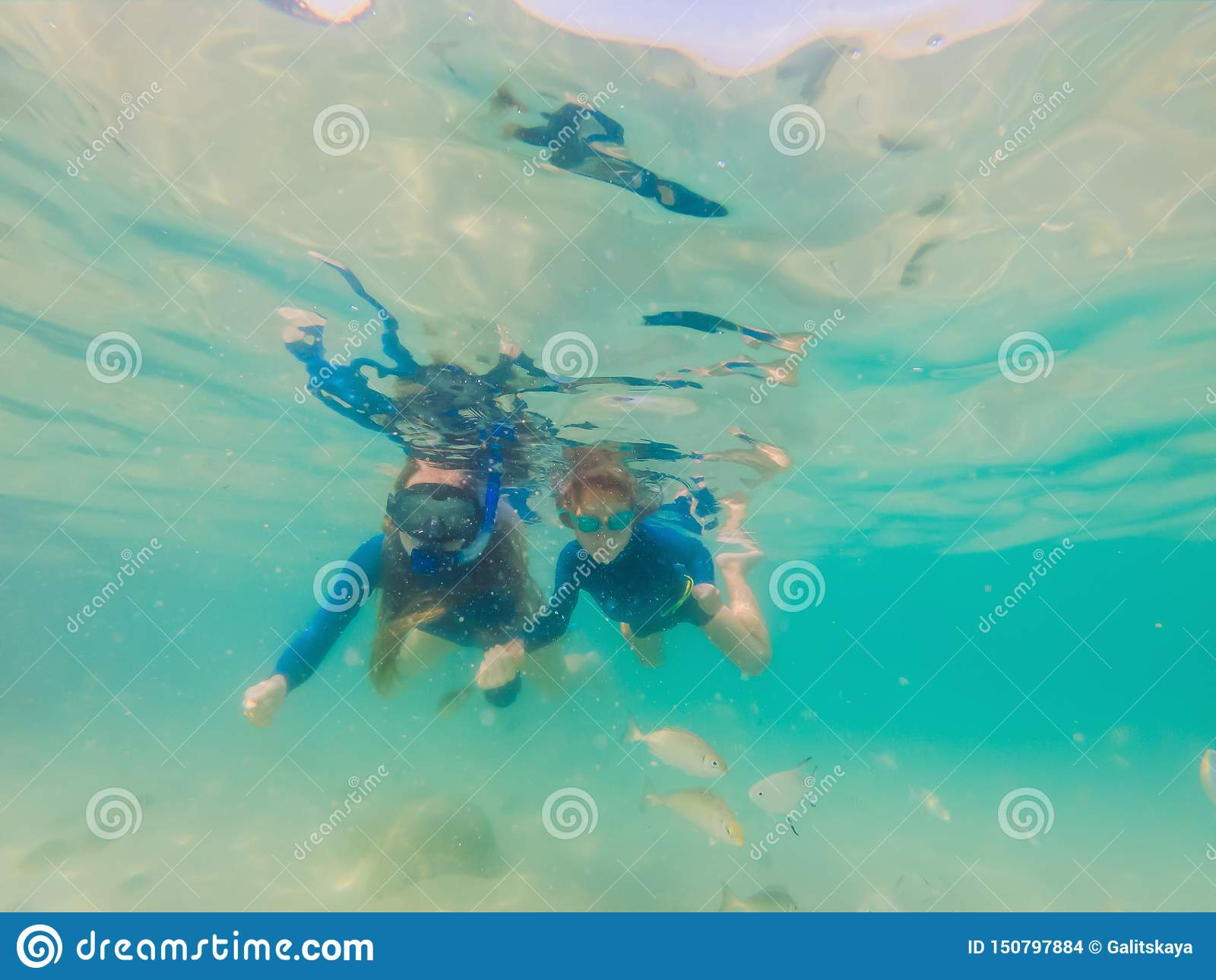 Mère heureuse et fils naviguant au schnorchel en mer Regardez les poissons sous l eau