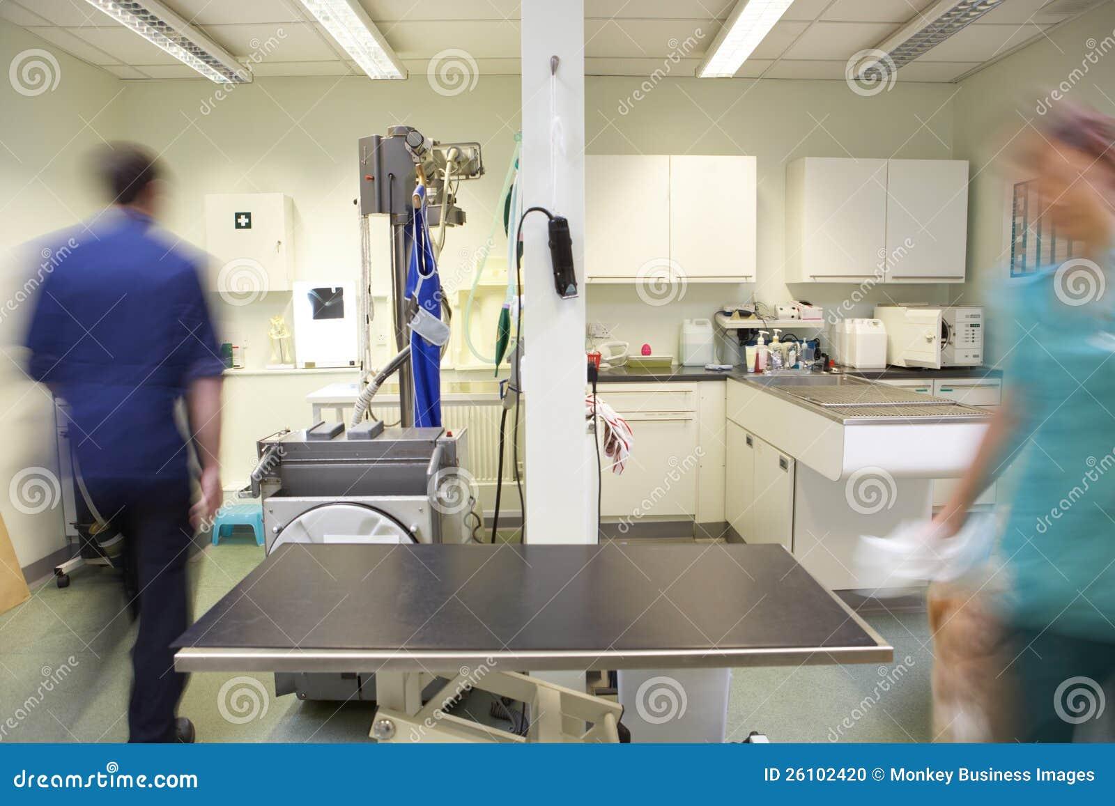 Médecin vétérinaire et infirmière mâles