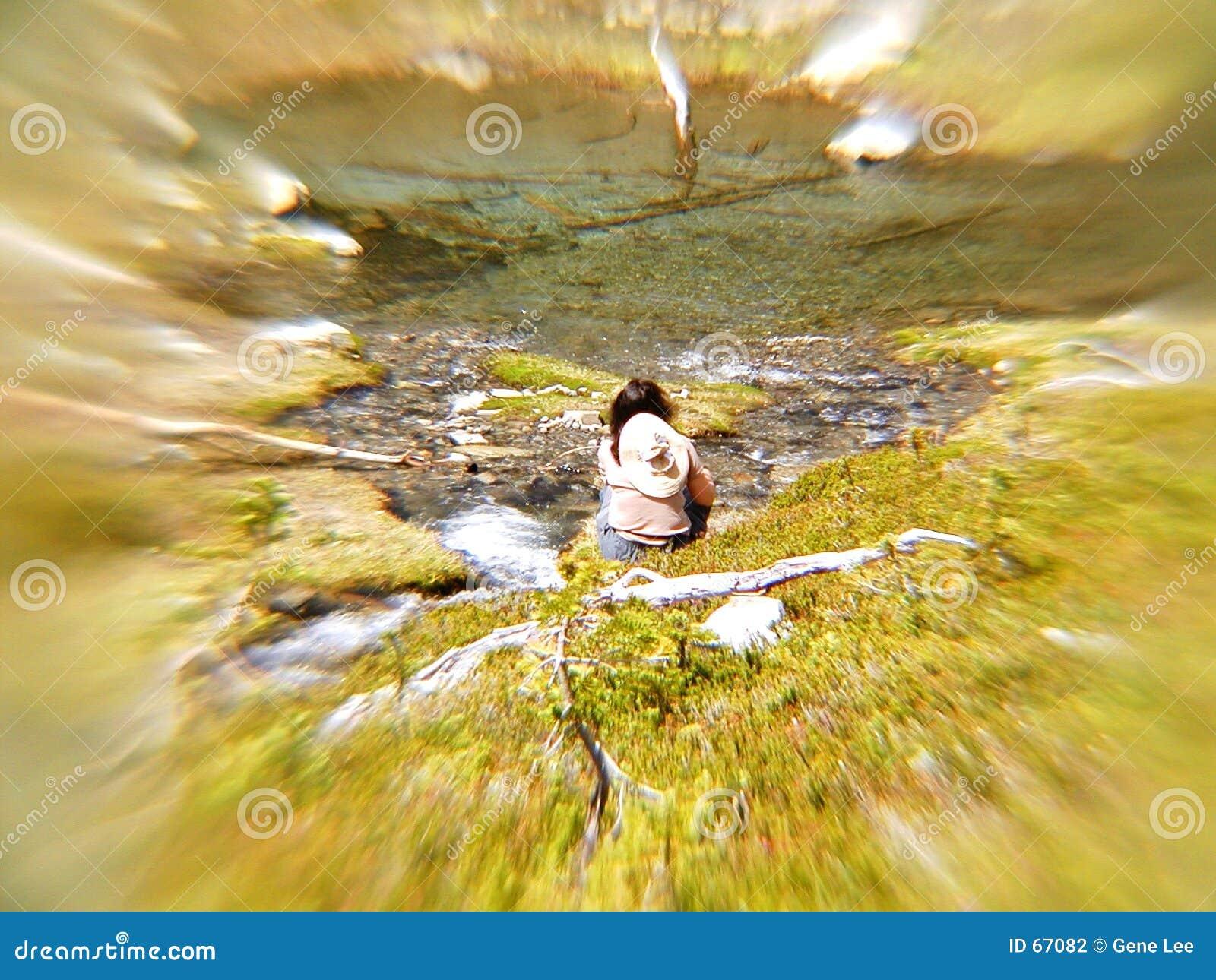 Méditation de Streamside