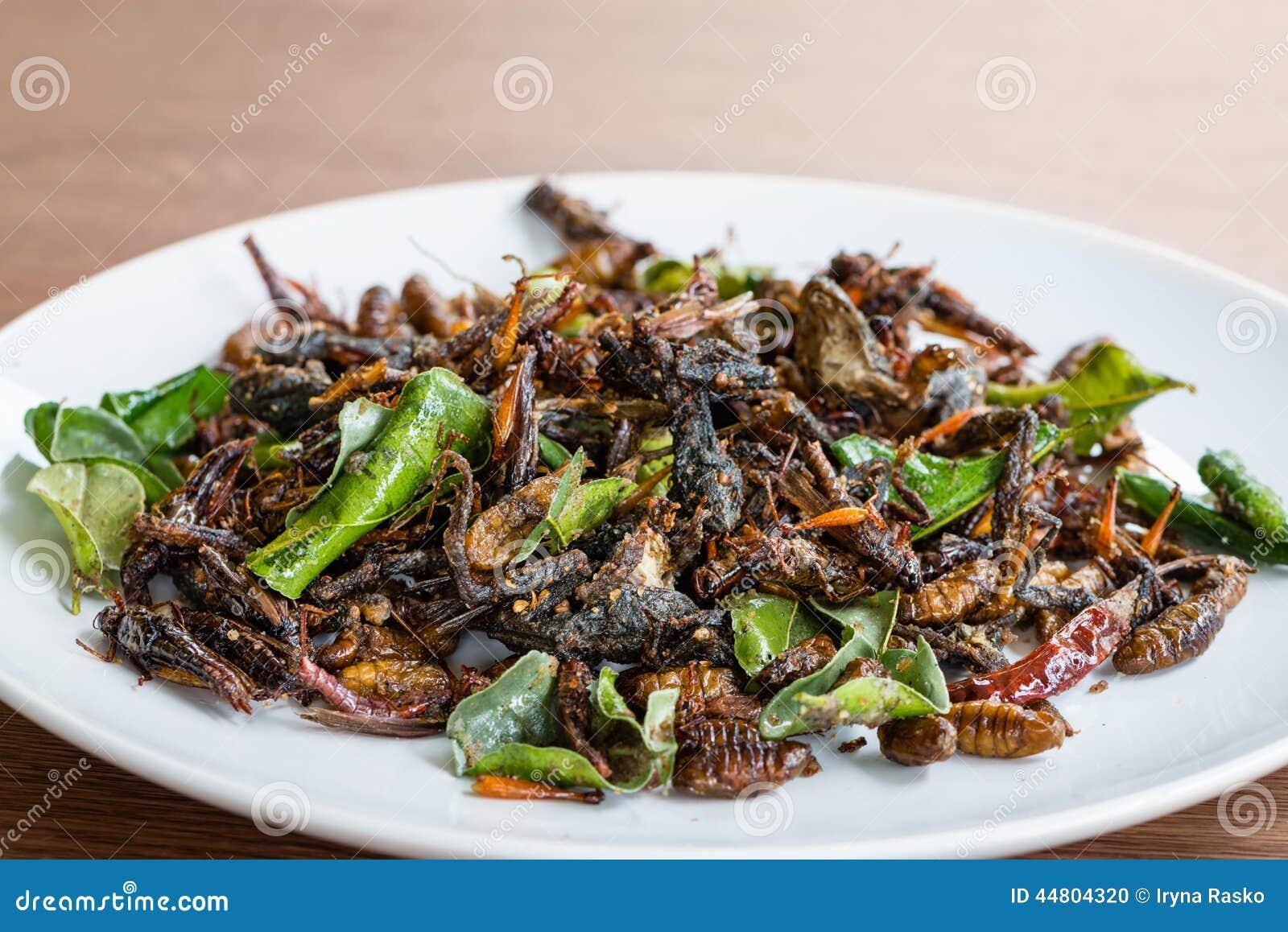 Mélange comestible frit d insectes du plat blanc