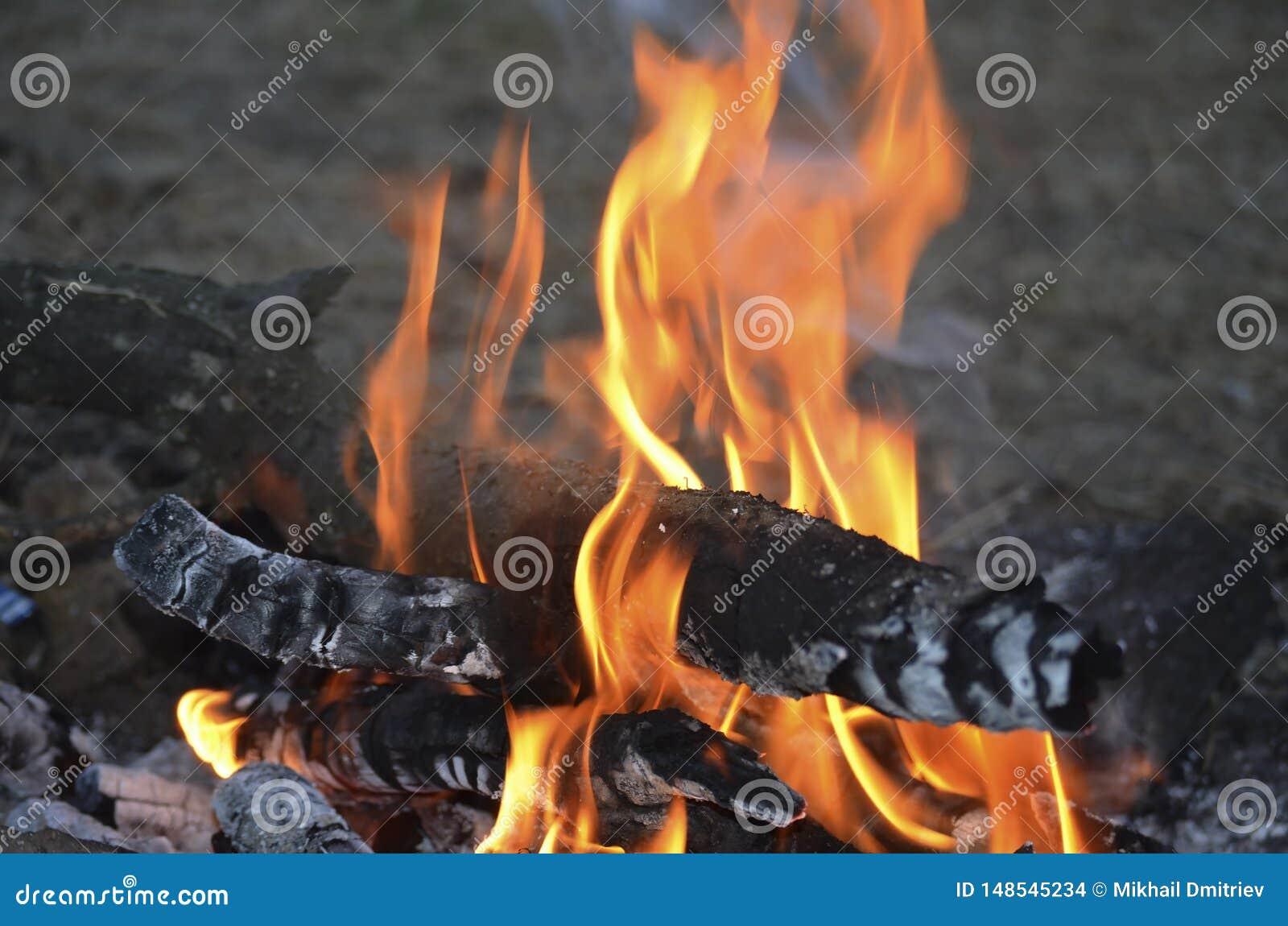 Même le feu dans le camp de scout