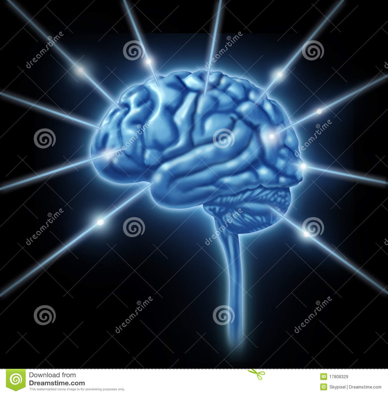 Móżdżkowe związków divis inteligenci lobe sekcje