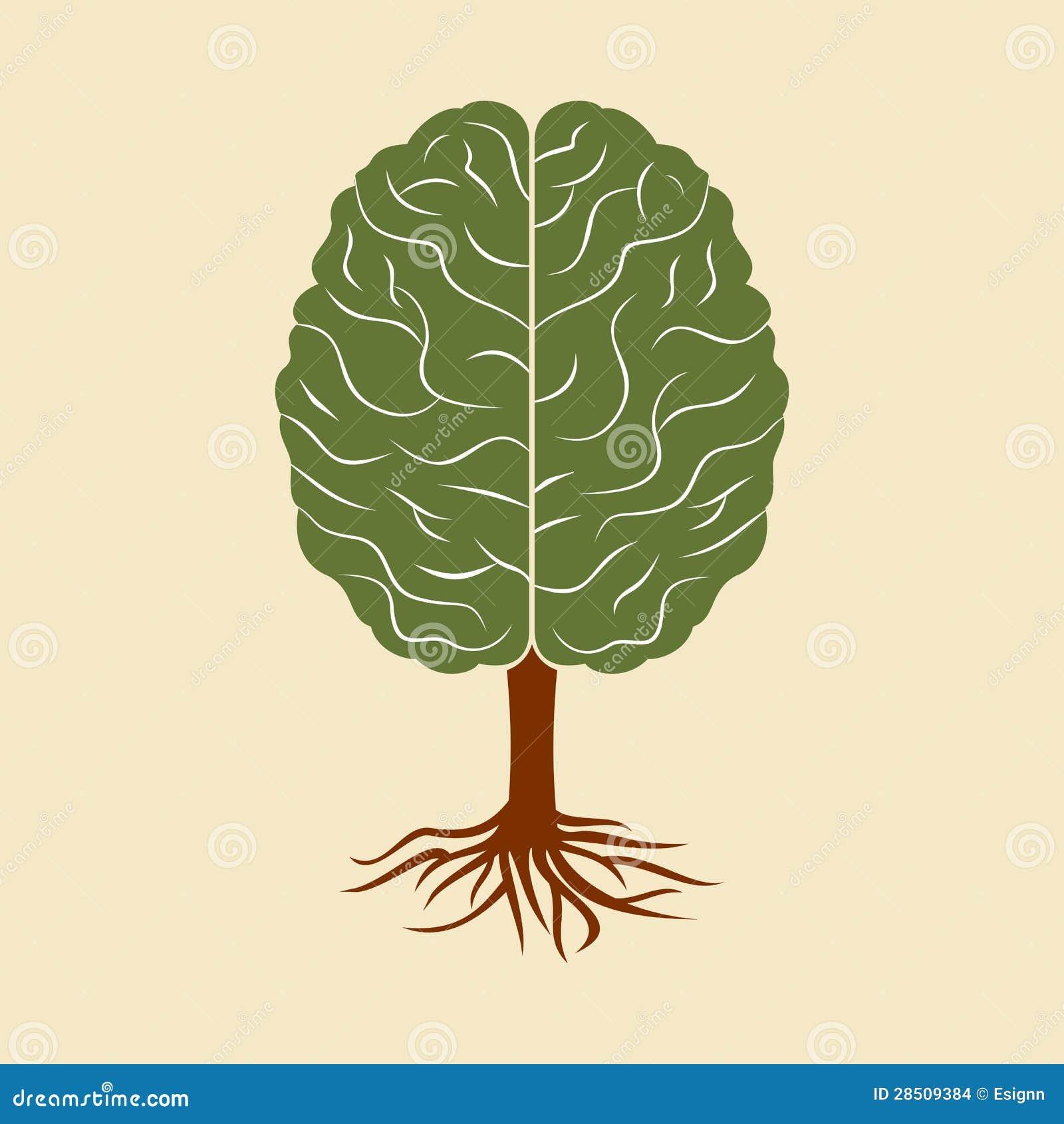Móżdżkowy dorośnięcie w formie drzewa