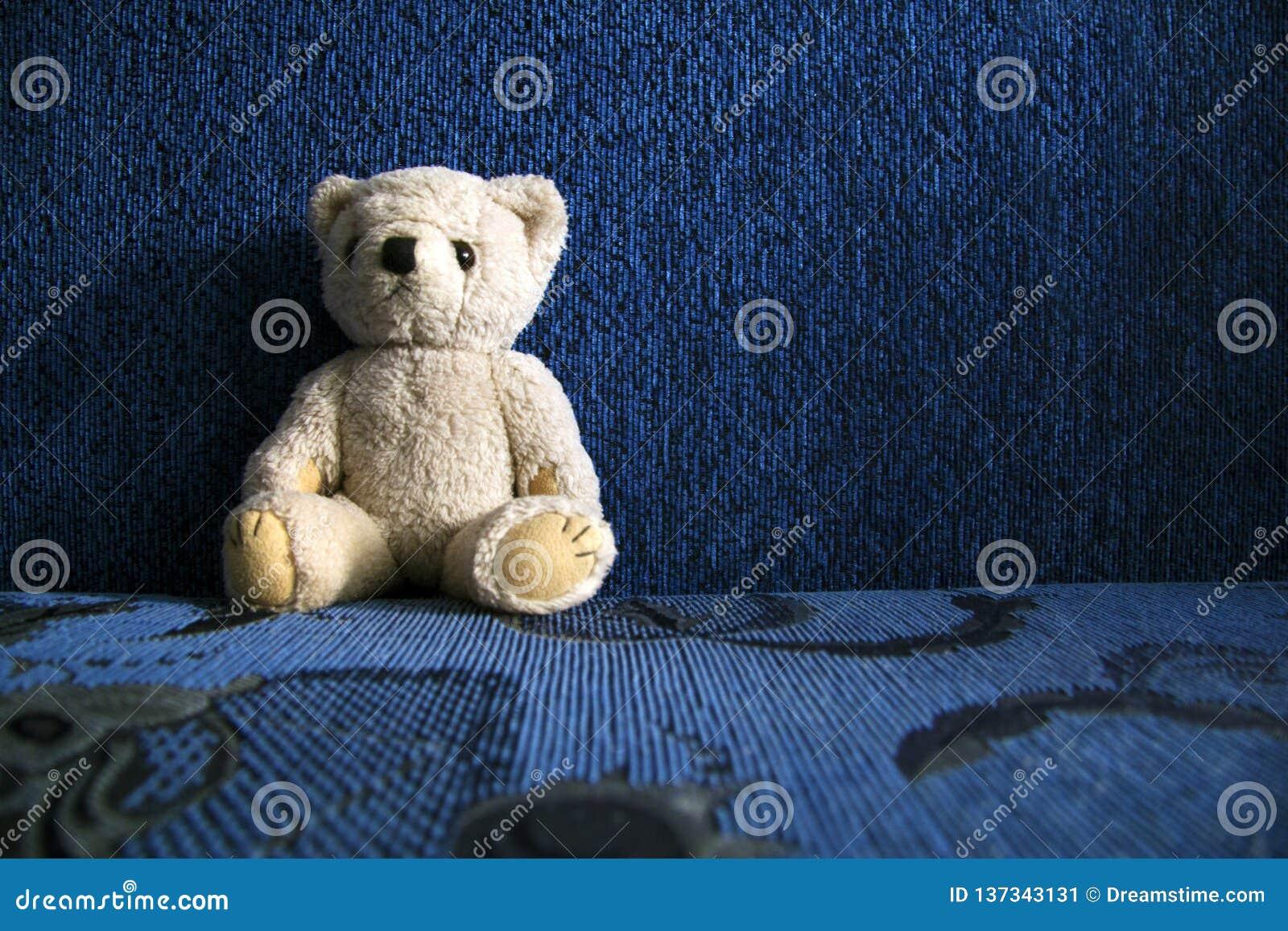Mój ulubiony niedźwiedź