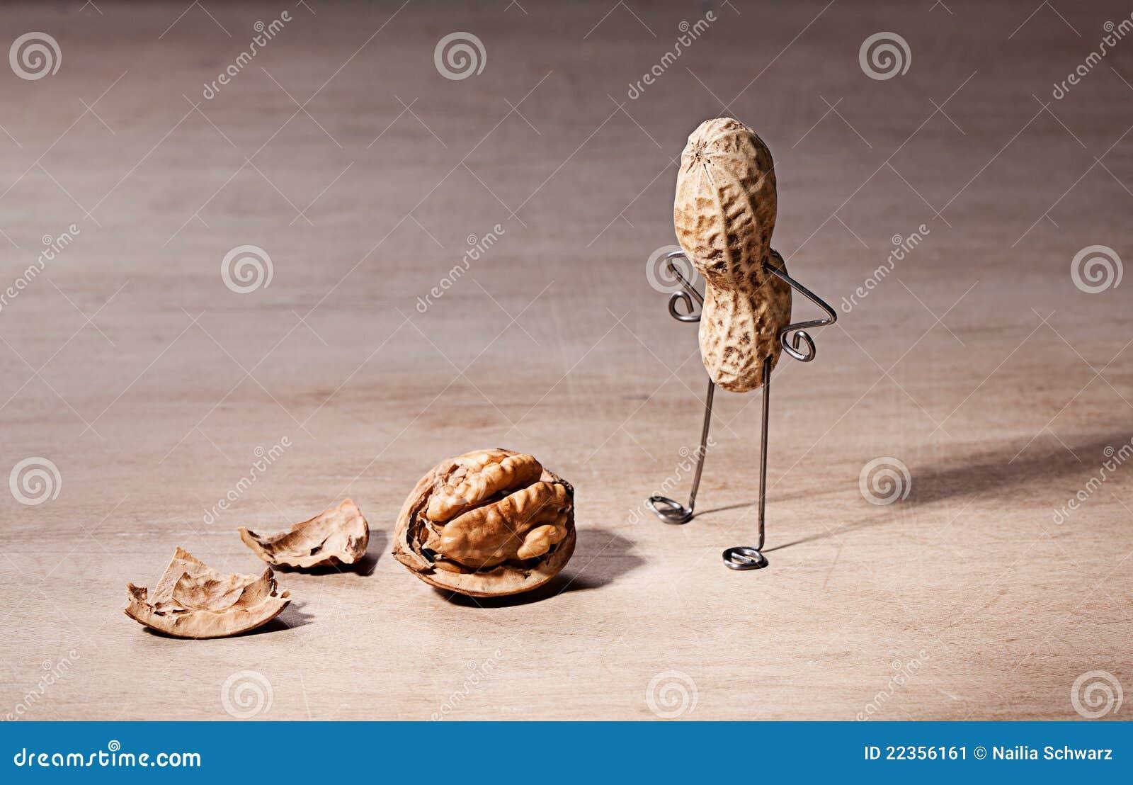 Mózg gubjący