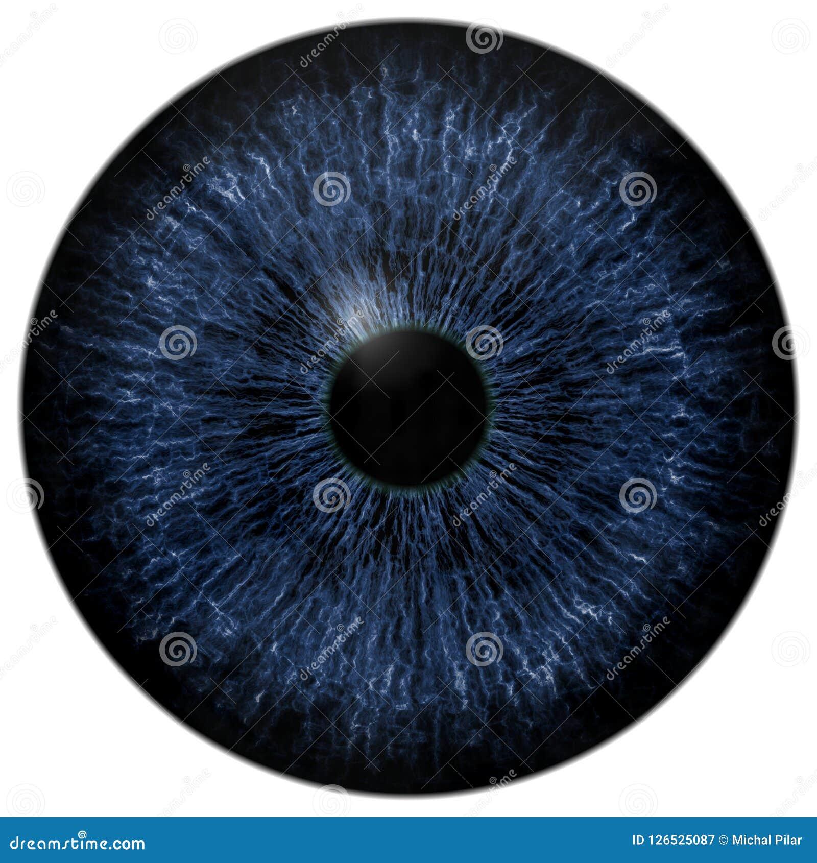Mörk läskig blå ögonglob, djur och mänskligt öga