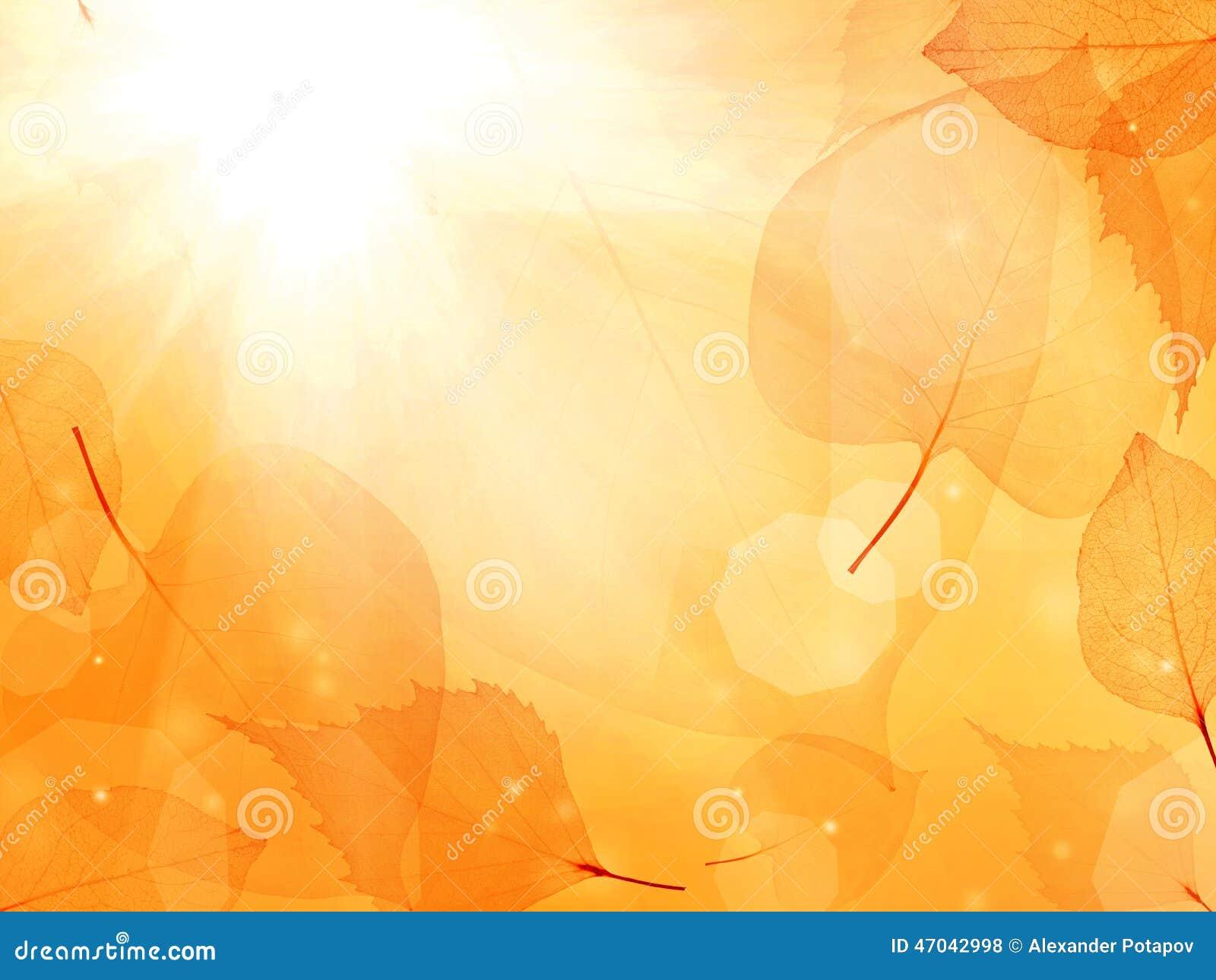 Mörker - orange bakgrund från tunna sidor