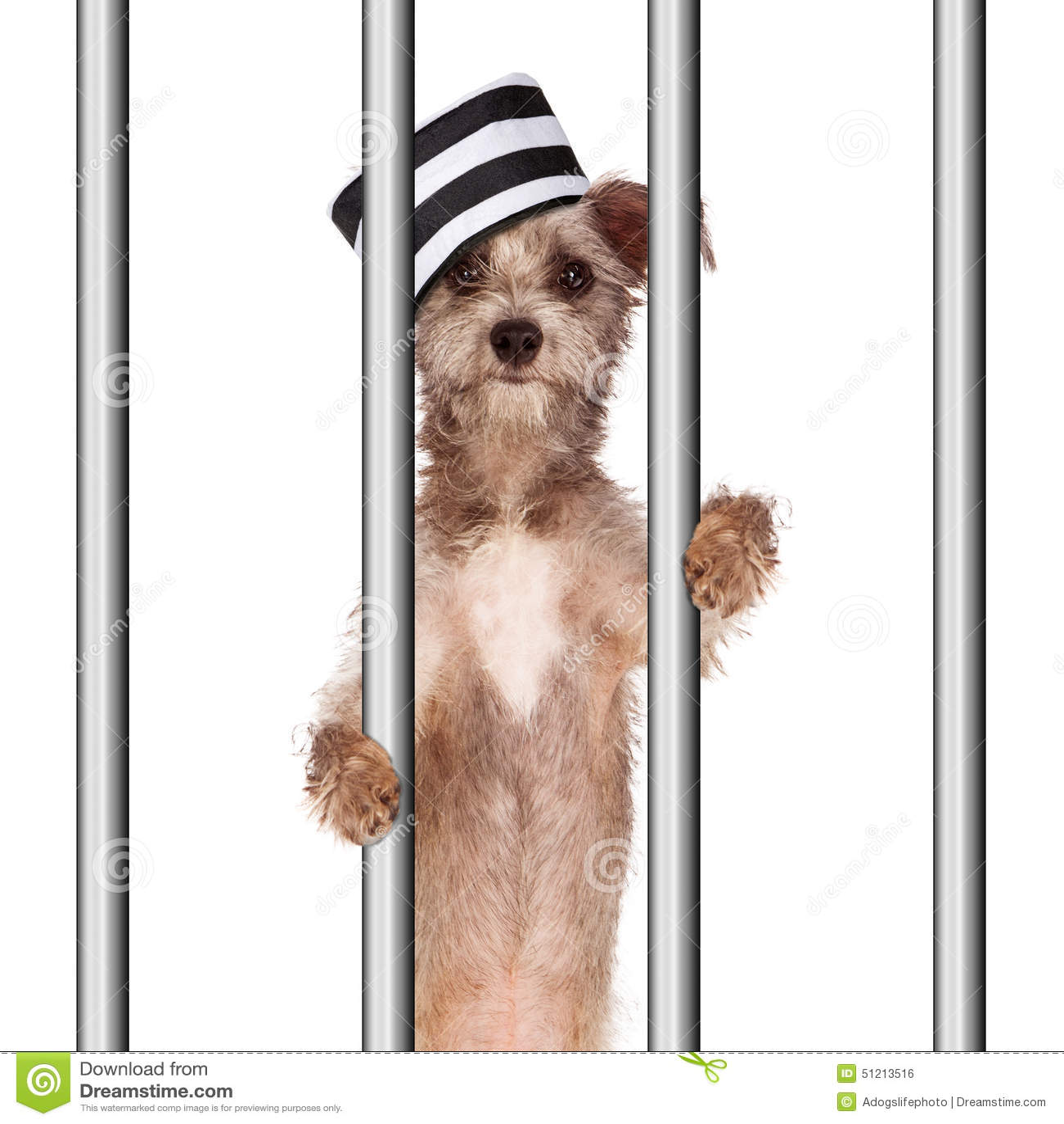 Resultado de imagen para preso en la carcel imagenes