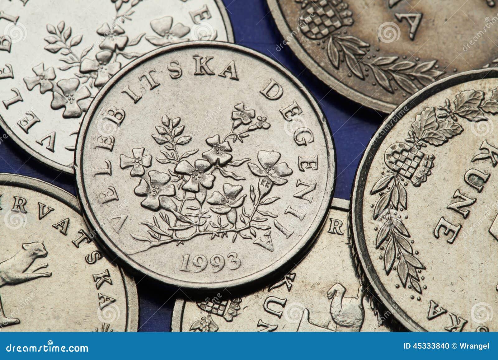 Münzen Von Kroatien Stockfoto Bild Von Niemand Geld 45333840
