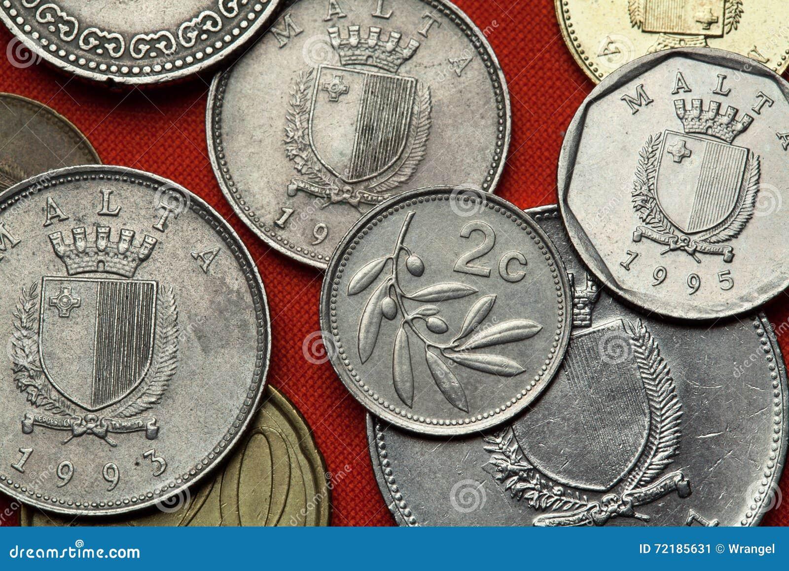 Münzen Von Malta Olivenbaum Olea Europaea Stockbild Bild Von
