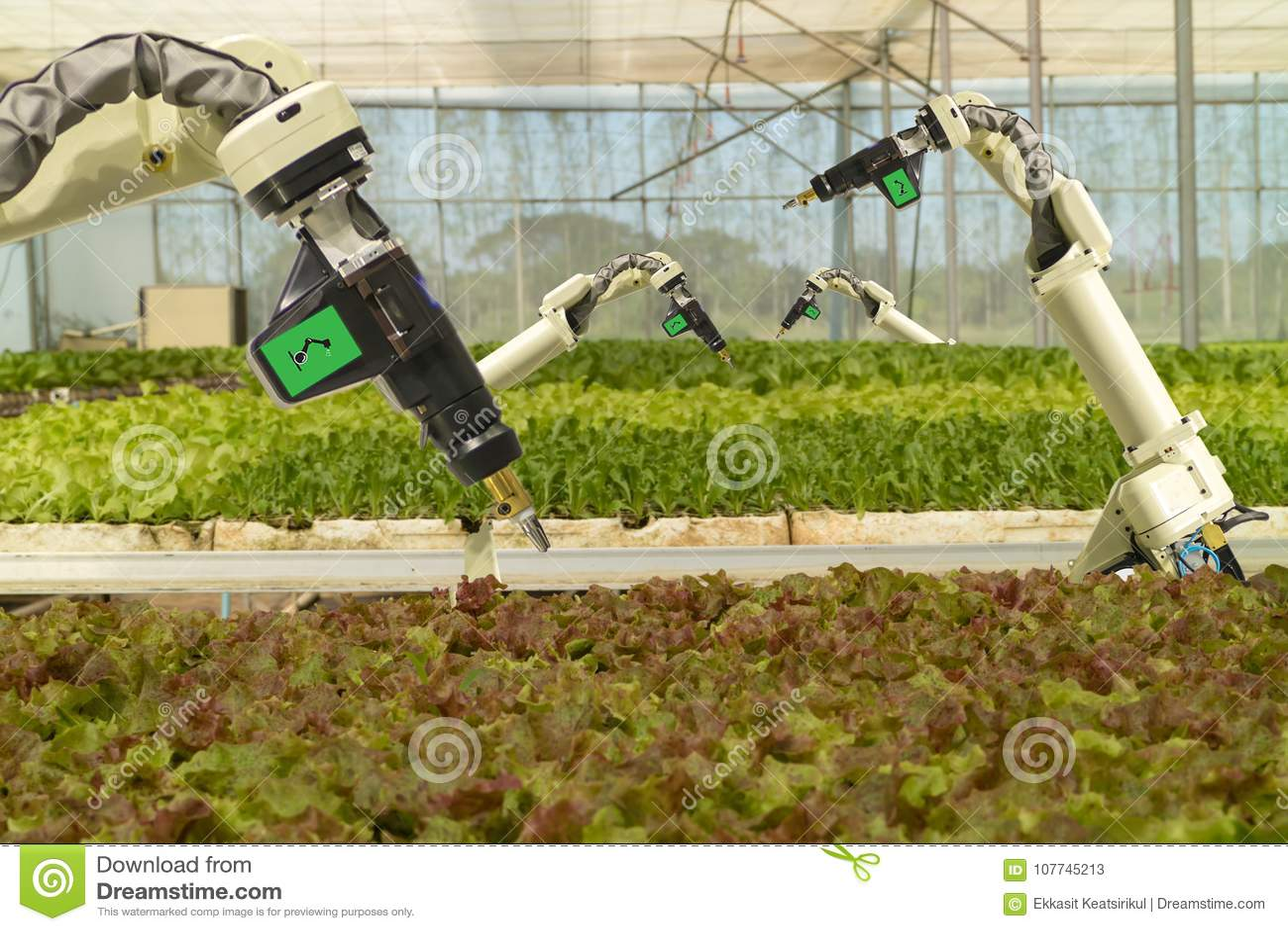 Mądrze mechaniczny w rolnictwa futurystycznym pojęciu, robotów rolników automatyzacja musi programujący pracować rozpylać substan