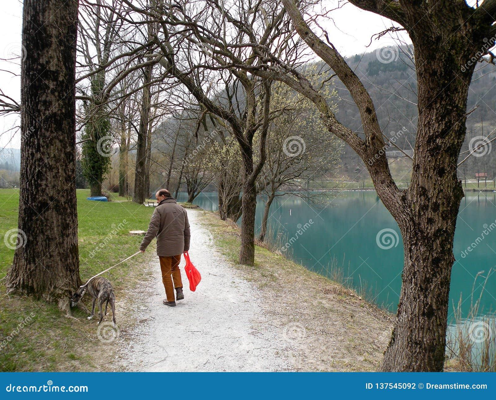 Mężczyzna z psem blisko halnego jeziora z turkusową błękitne wody i starym drzewem
