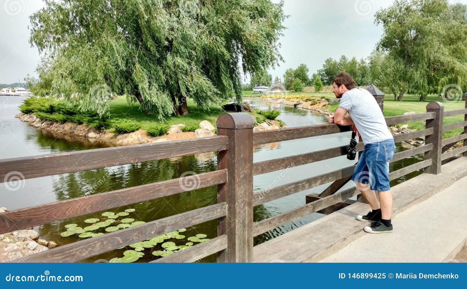 Mężczyzny stojaki na moście i spojrzenia przy widokiem: staw, wodne leluje, wyspa z wierzbą, starannie naszywany gazon