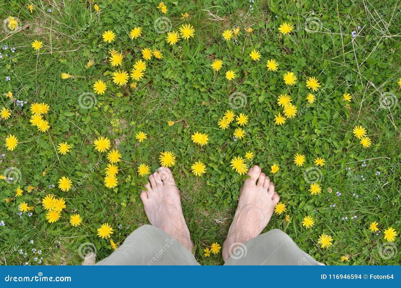 Męscy nadzy cieki wśród dandelions
