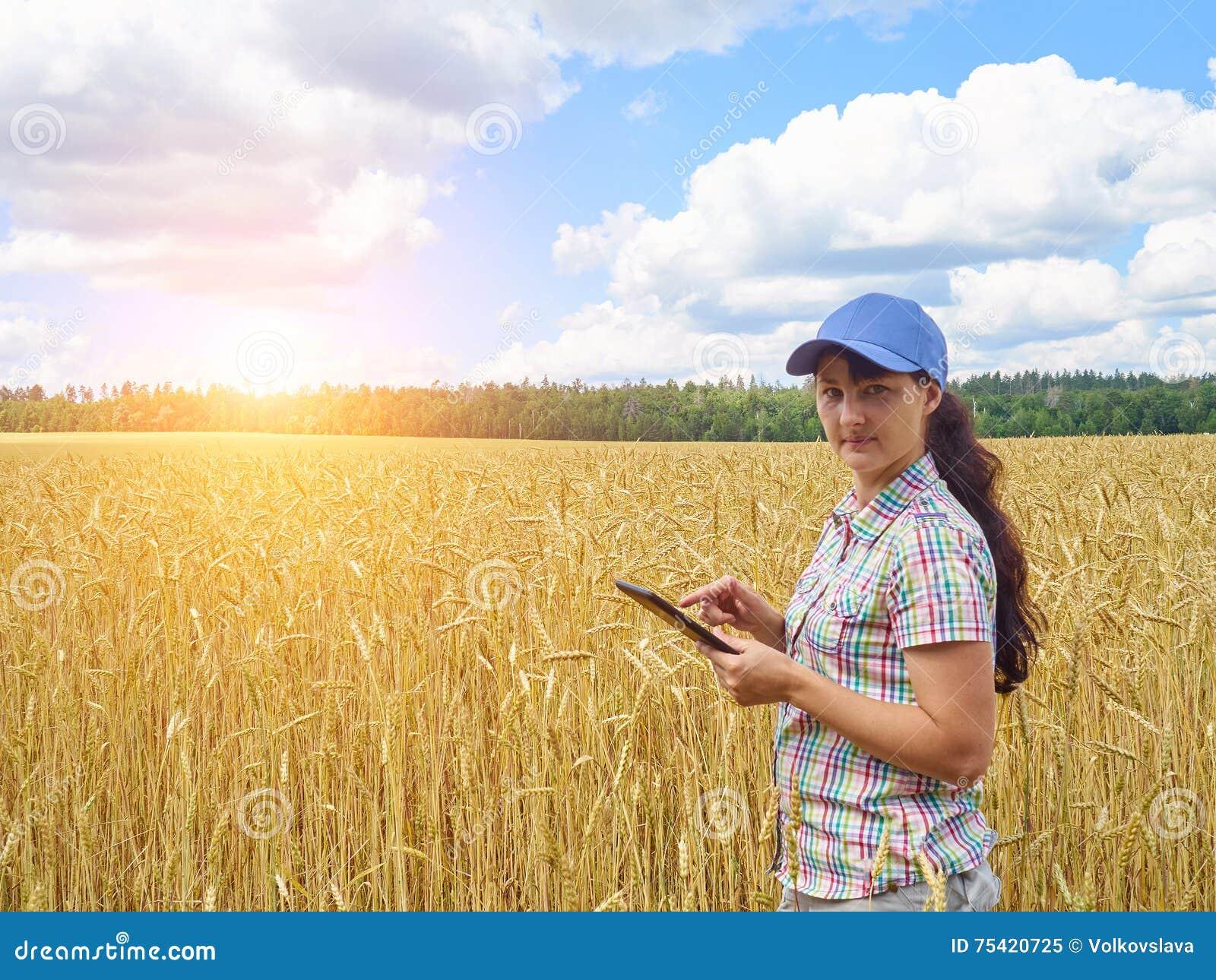 Młoda ładna średniorolna dziewczyny pozycja w żółtym pszenicznym polu