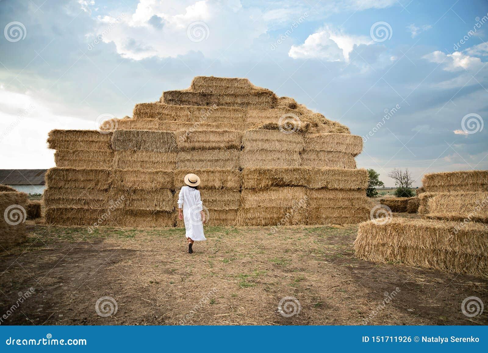 Młoda dziewczyna jest ubranym lato bielu suknię blisko siano beli w polu Piękna dziewczyna na rolnej ziemi Pszeniczny żółty złoty